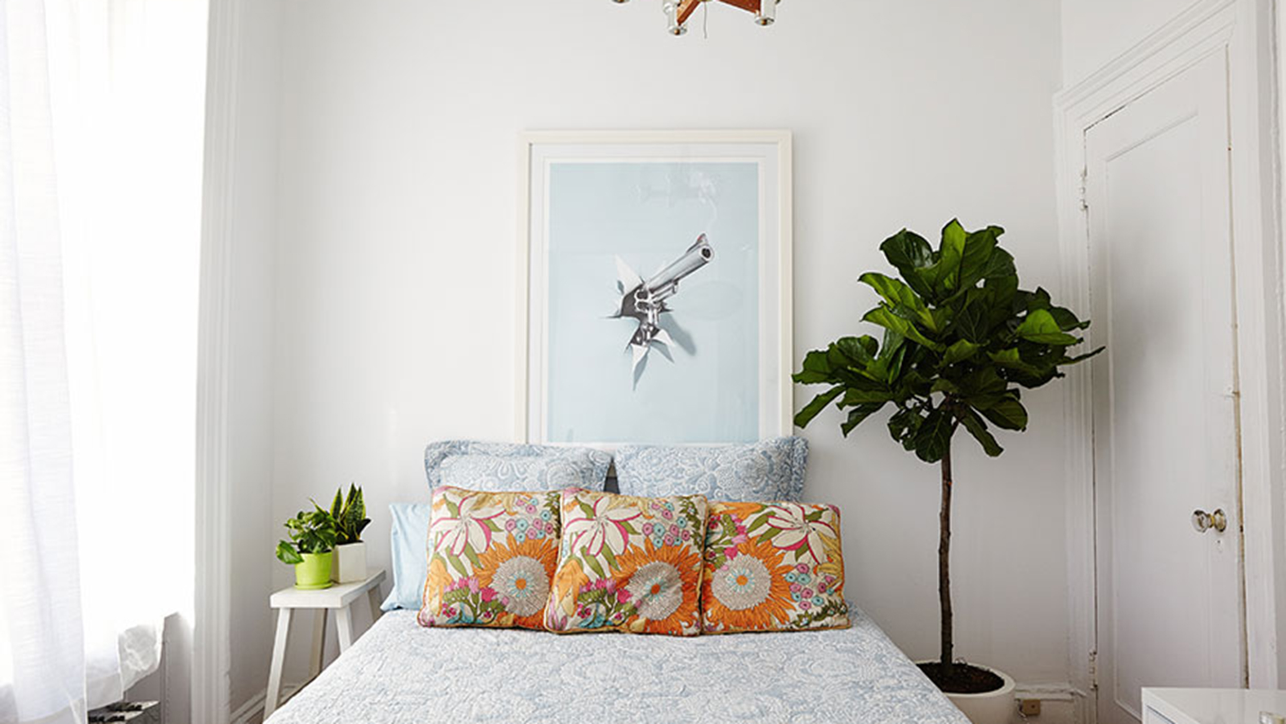 what to know about the fiddle leaf fig tree todaycom