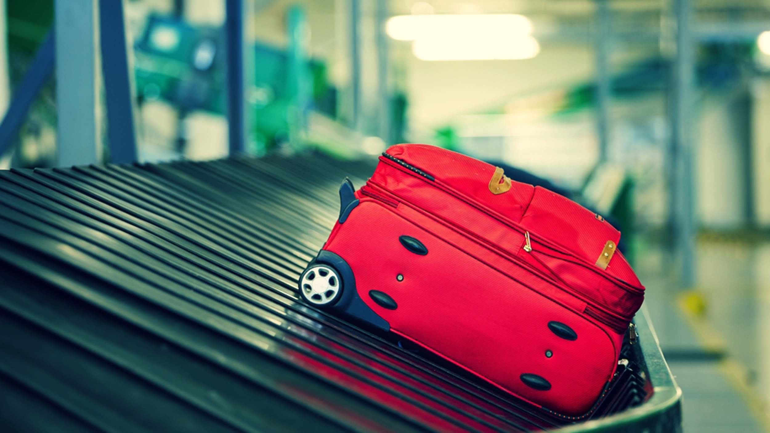 Luggage roller coaster: Watch what happens to your checked bags at ...