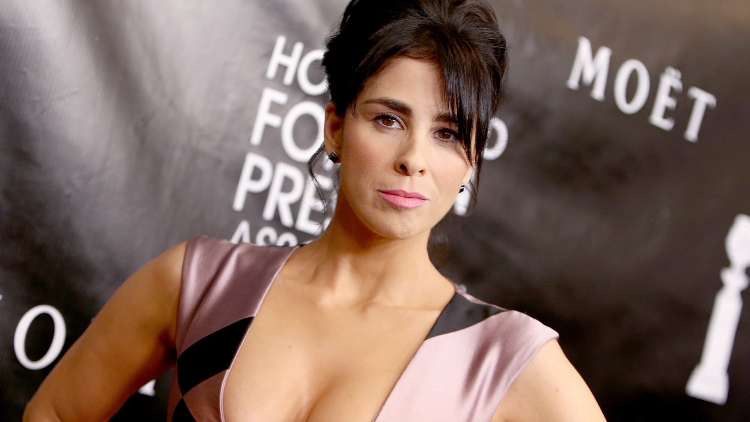 Fotos Sarah Silverman nudes (97 photos), Sexy, Sideboobs, Twitter, cleavage 2020