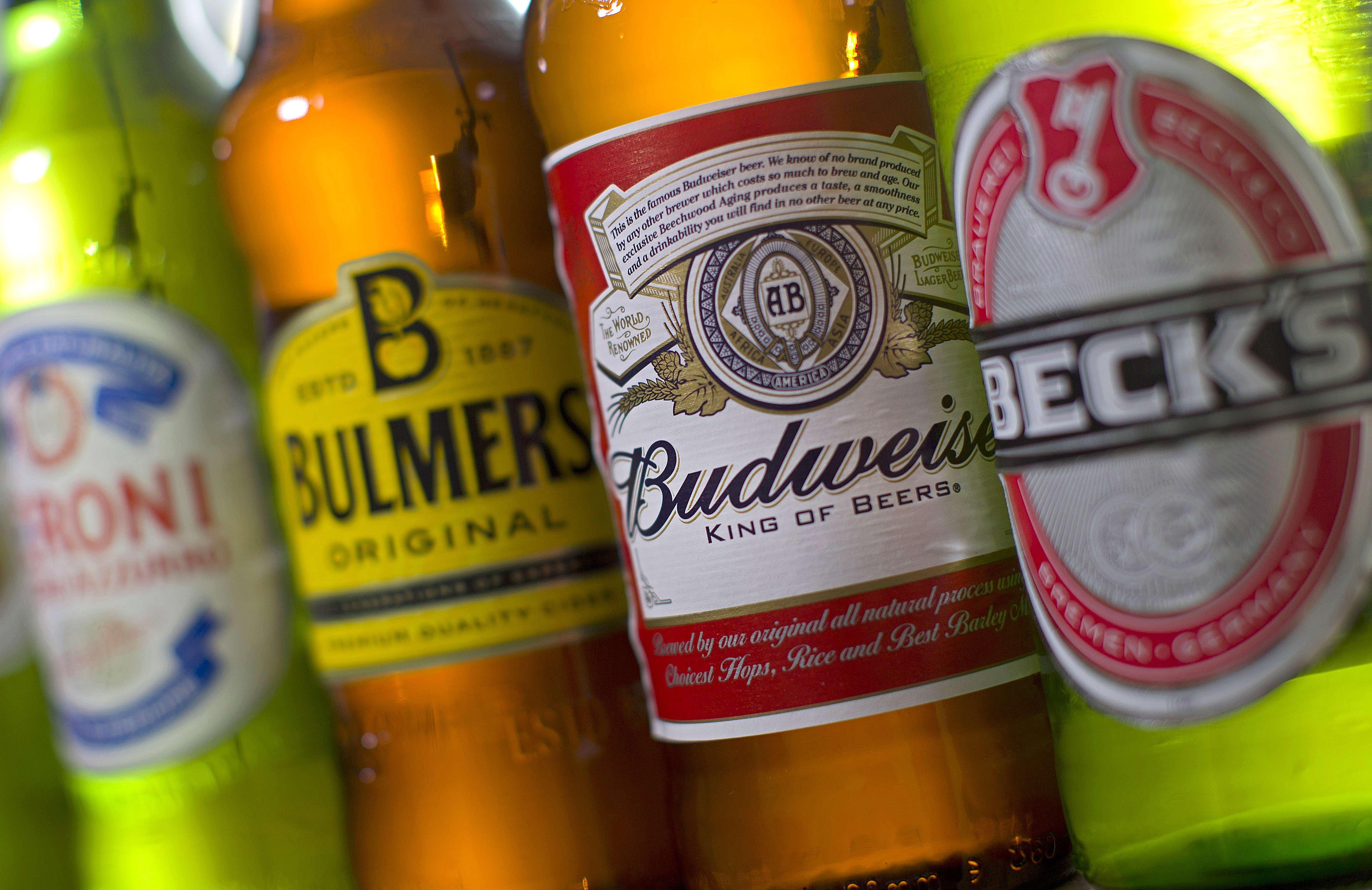 Medium-Size Beer Brewers