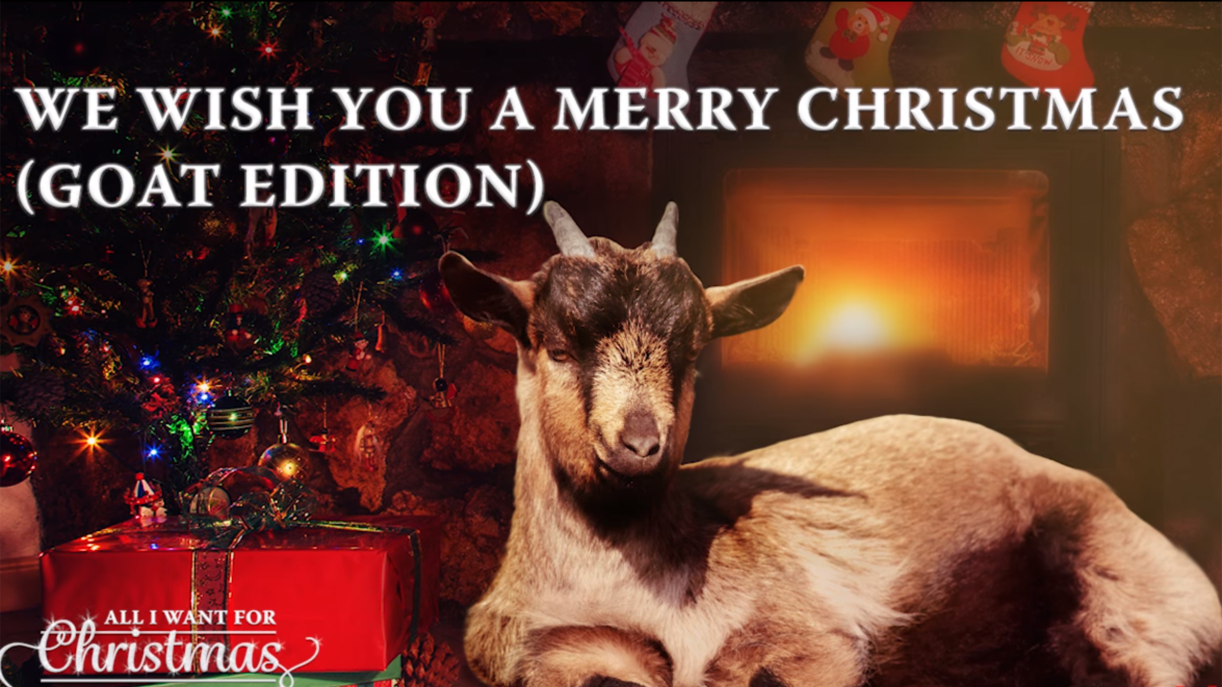 Goats singing Christmas carols is the only album you'll ...