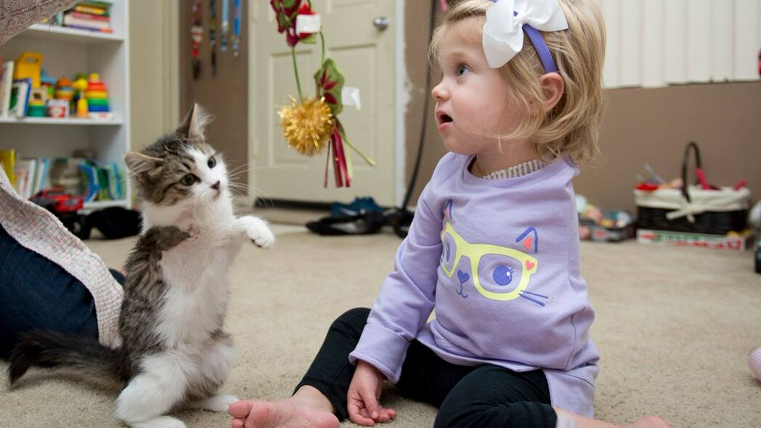 girl who lost arm to cancer adopts kitten with missing