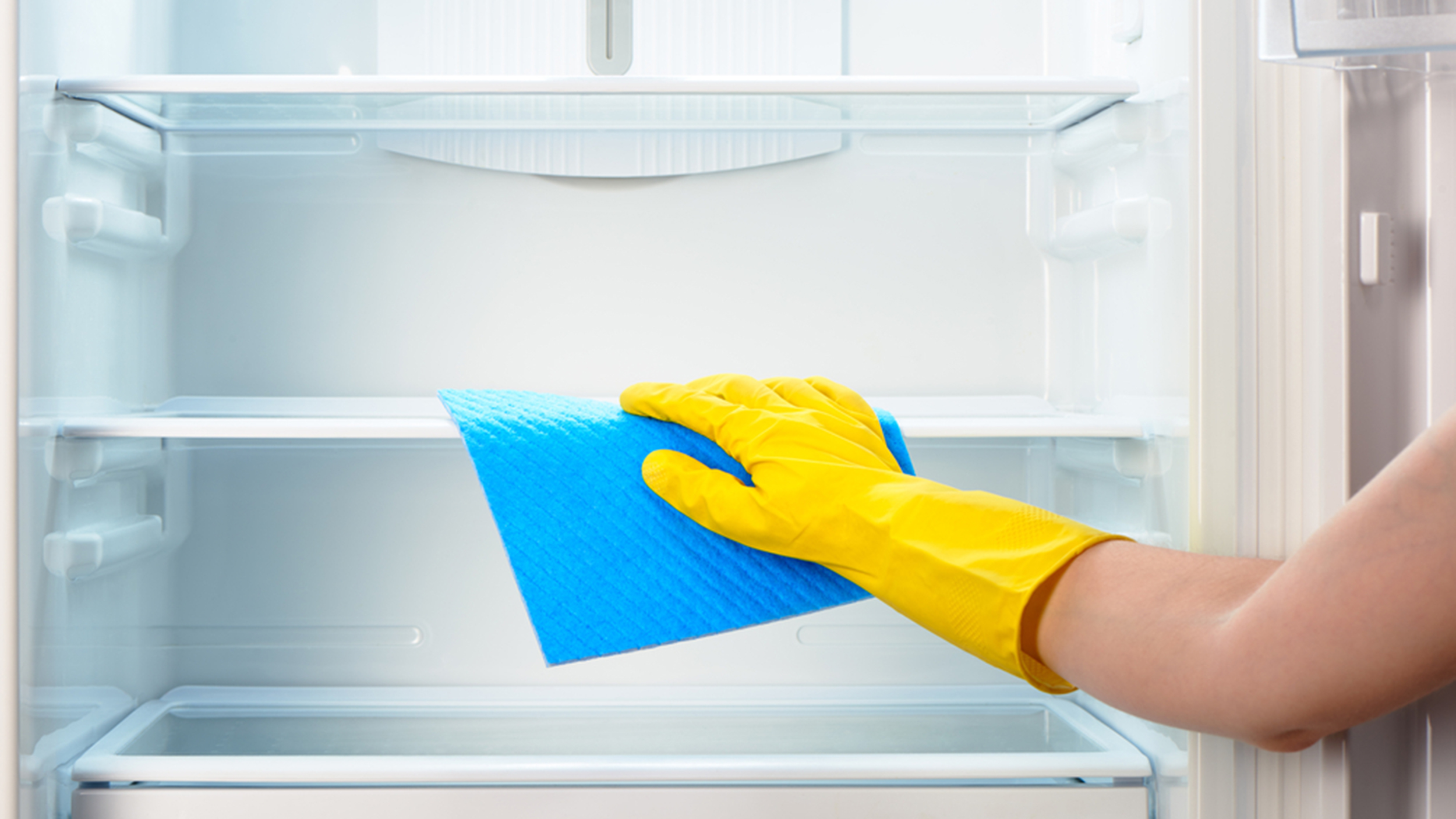 how often you should clean your refrigerator and the
