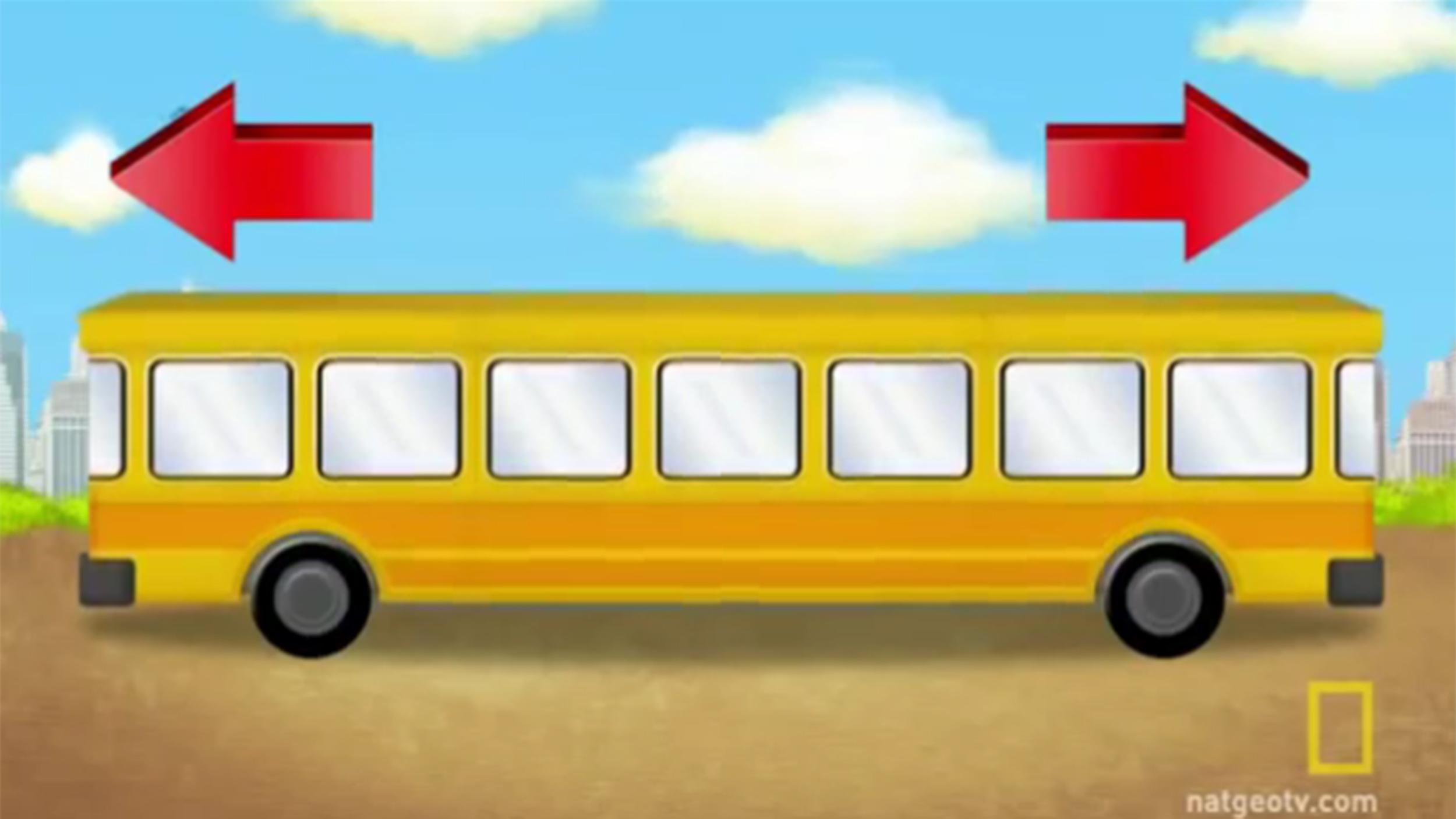 bus tease