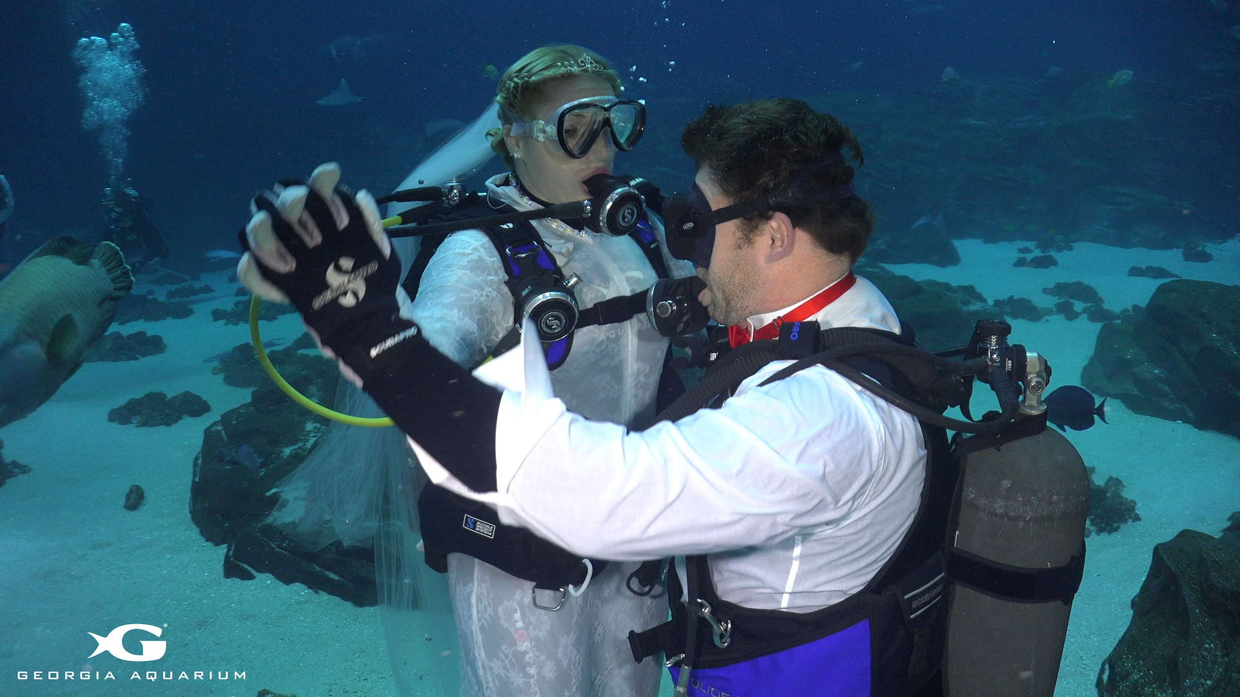 Couple gets married in underwater wedding ceremony at for Plenty of fish atlanta ga