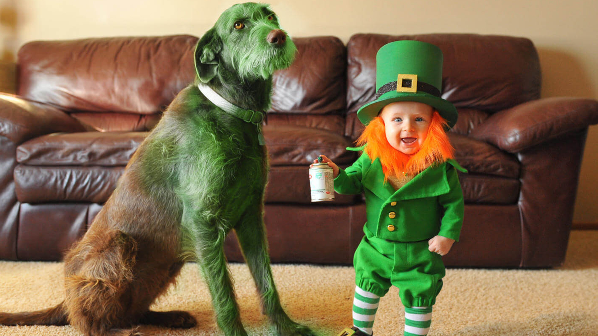 Dad Turns Baby Son Into Leprechaun For St Patrick S Day