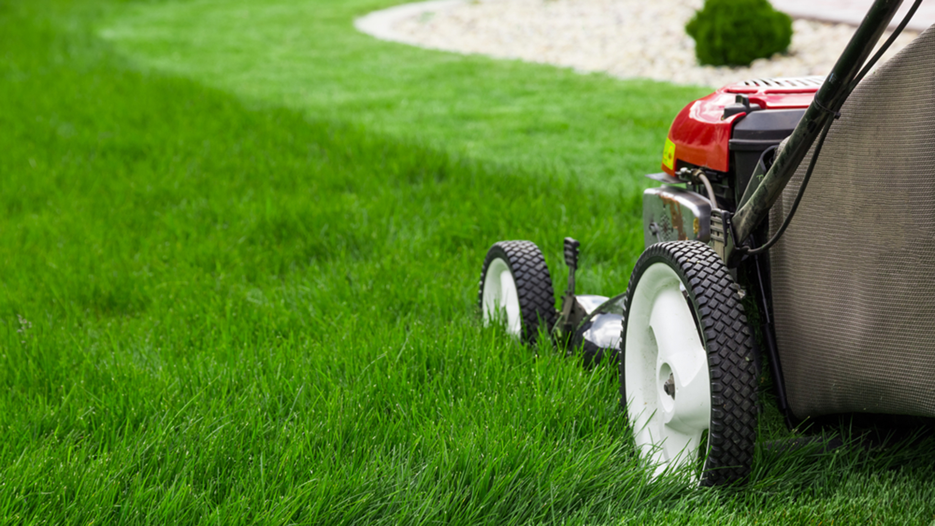 One Owner Car Guy >> Lawn care: Here are lawn care tips for your yard - TODAY.com