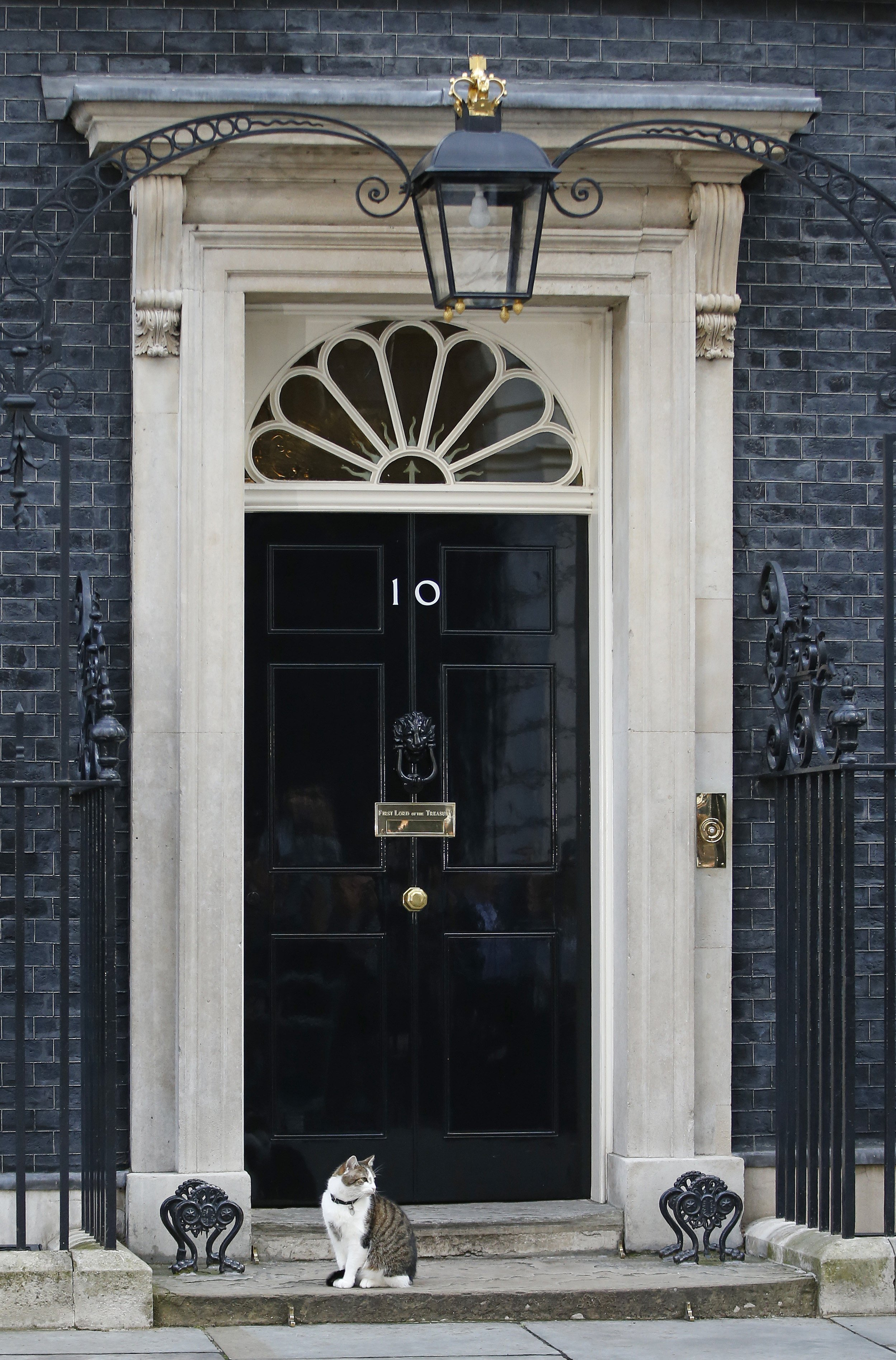 British PM Moves out, but Cat Gets to Stay