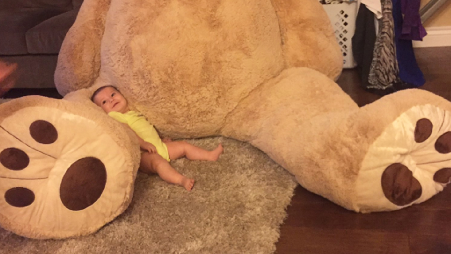Grandpa buys enormous stuffed bear for 5-month-old granddaughter - TODAY.com