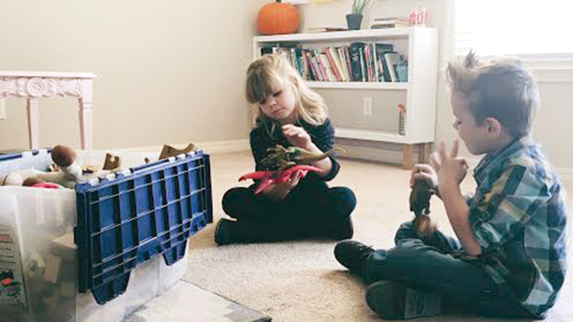 Minimalist mom gives away kids toys to declutter home TODAY