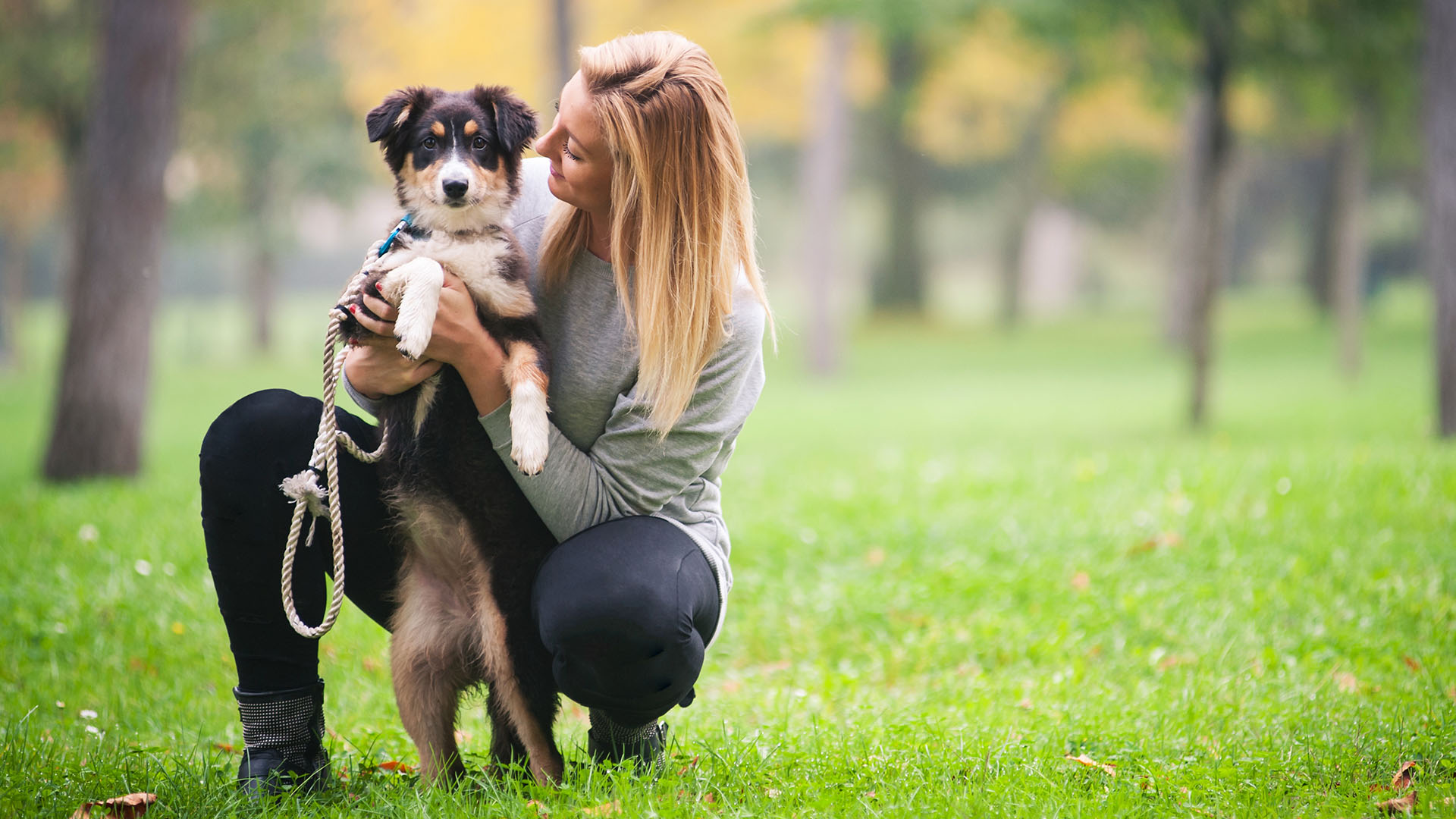 5 easy ways to exercise with your pet today com