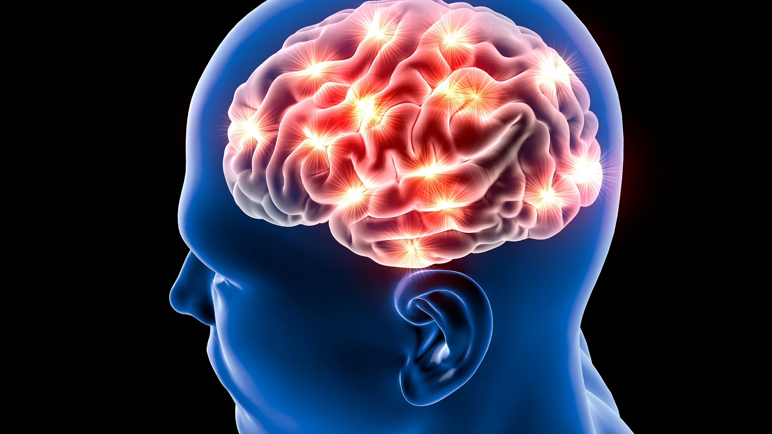 What Food That Is Good For The Brain