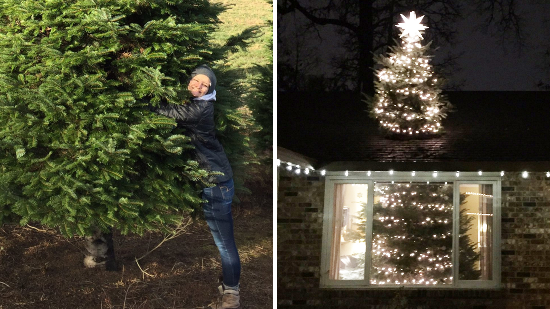 this crazy christmas tree trend is through the roof todaycom - Half Christmas Tree