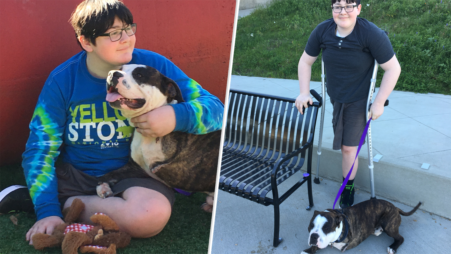 Boy Who Lost Leg To Cancer Happily Adopts A Dog With 3