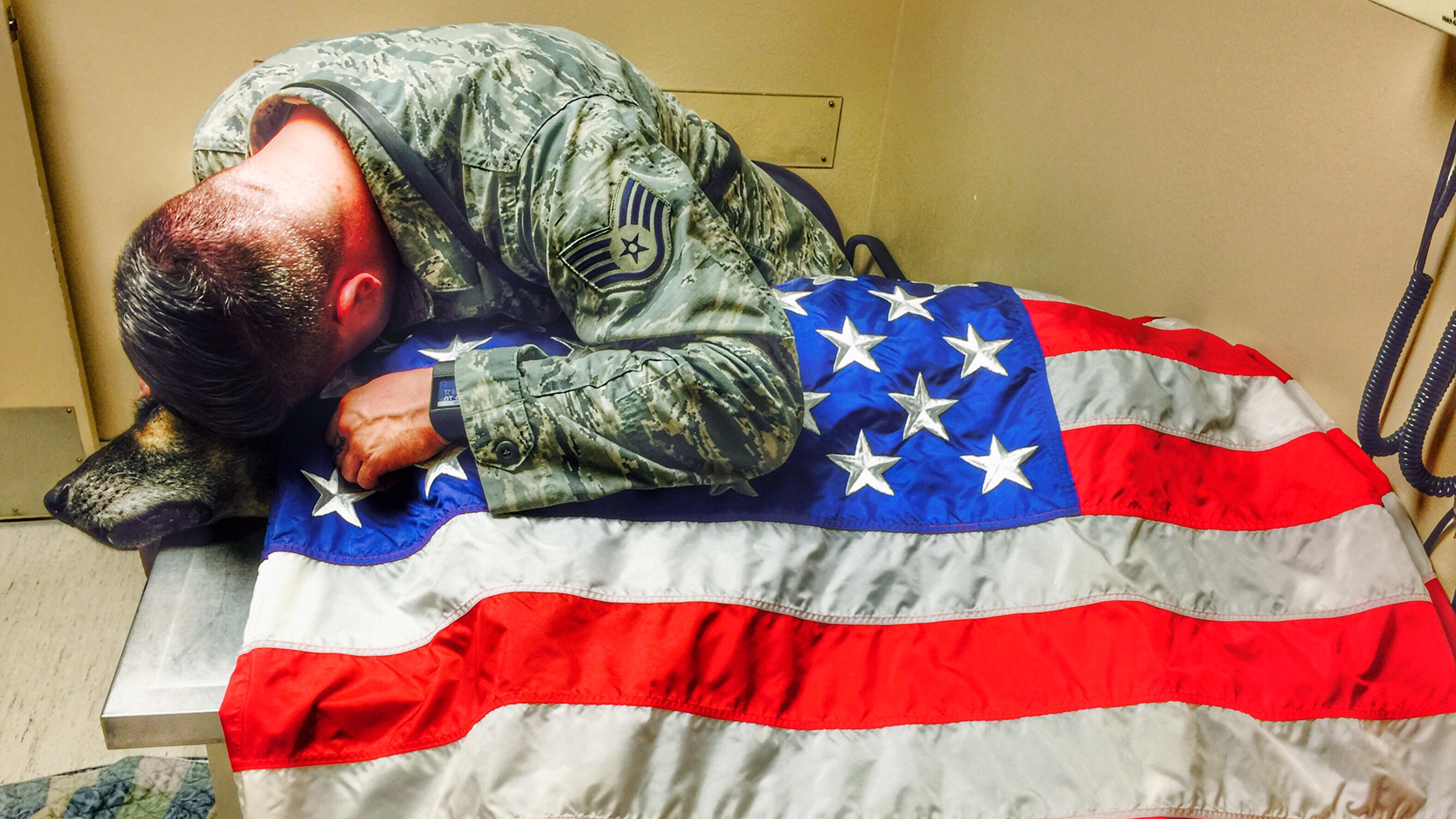 air force veteran drapes flag over beloved military dog during