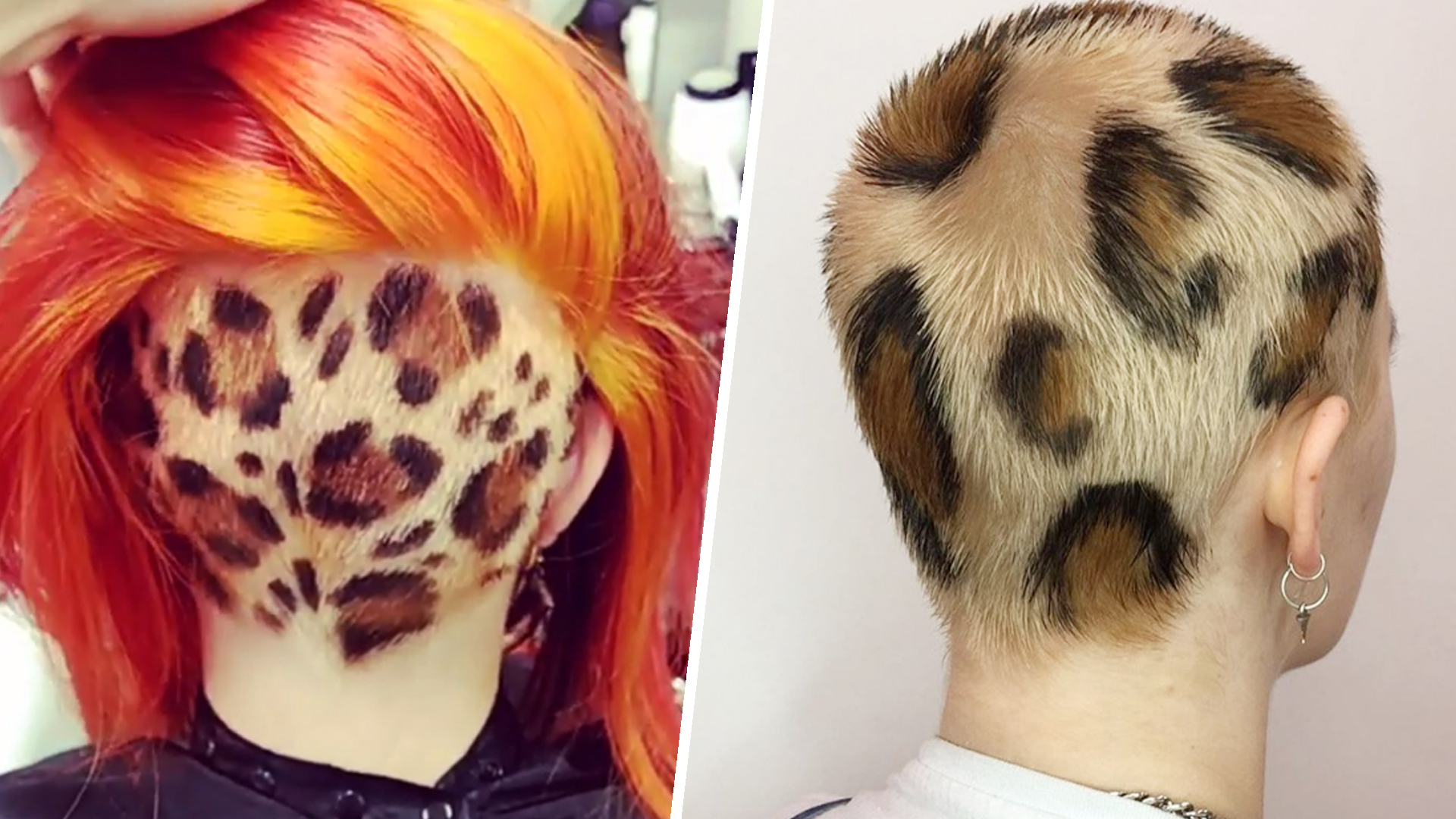 leopard hair style is leopard print hair edgy and cool or completely 2090