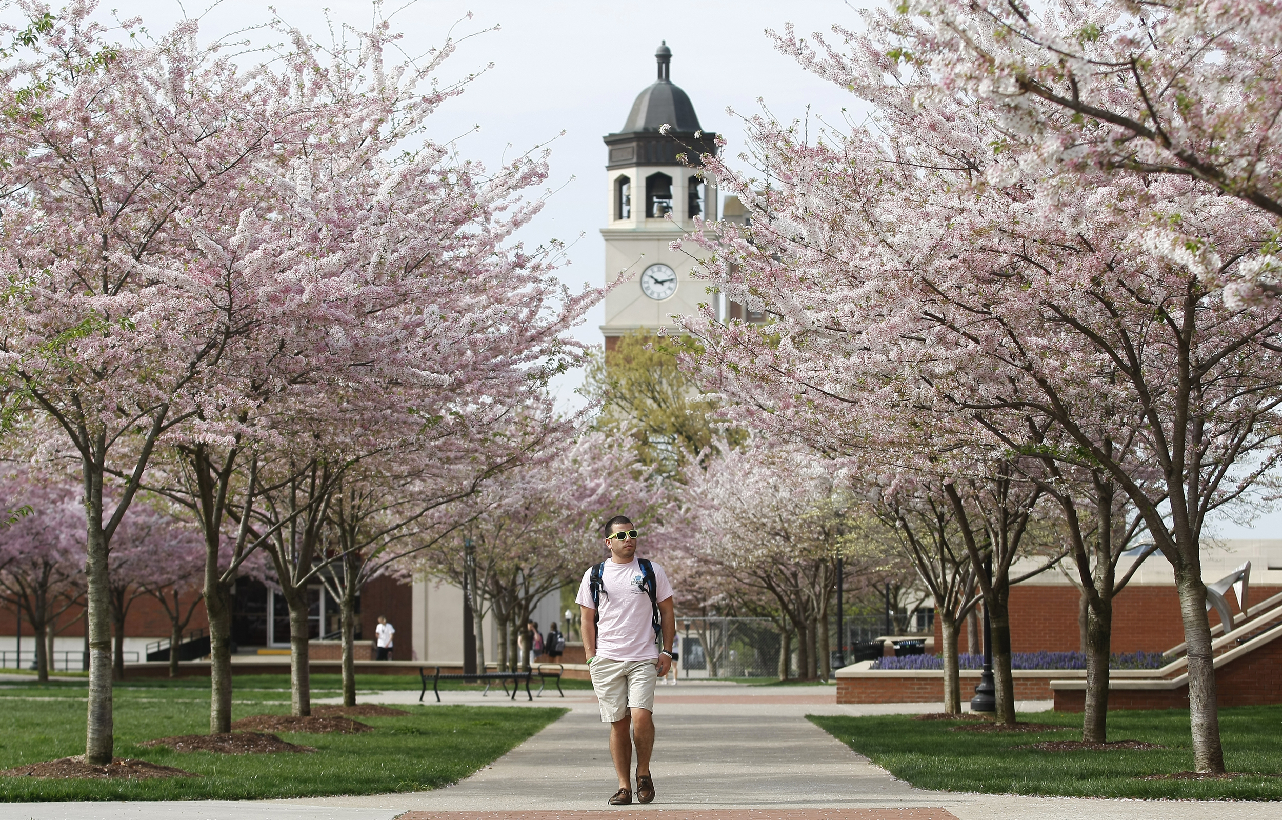Western Kentucky Univ  Students Pass Bill For Free Tuition