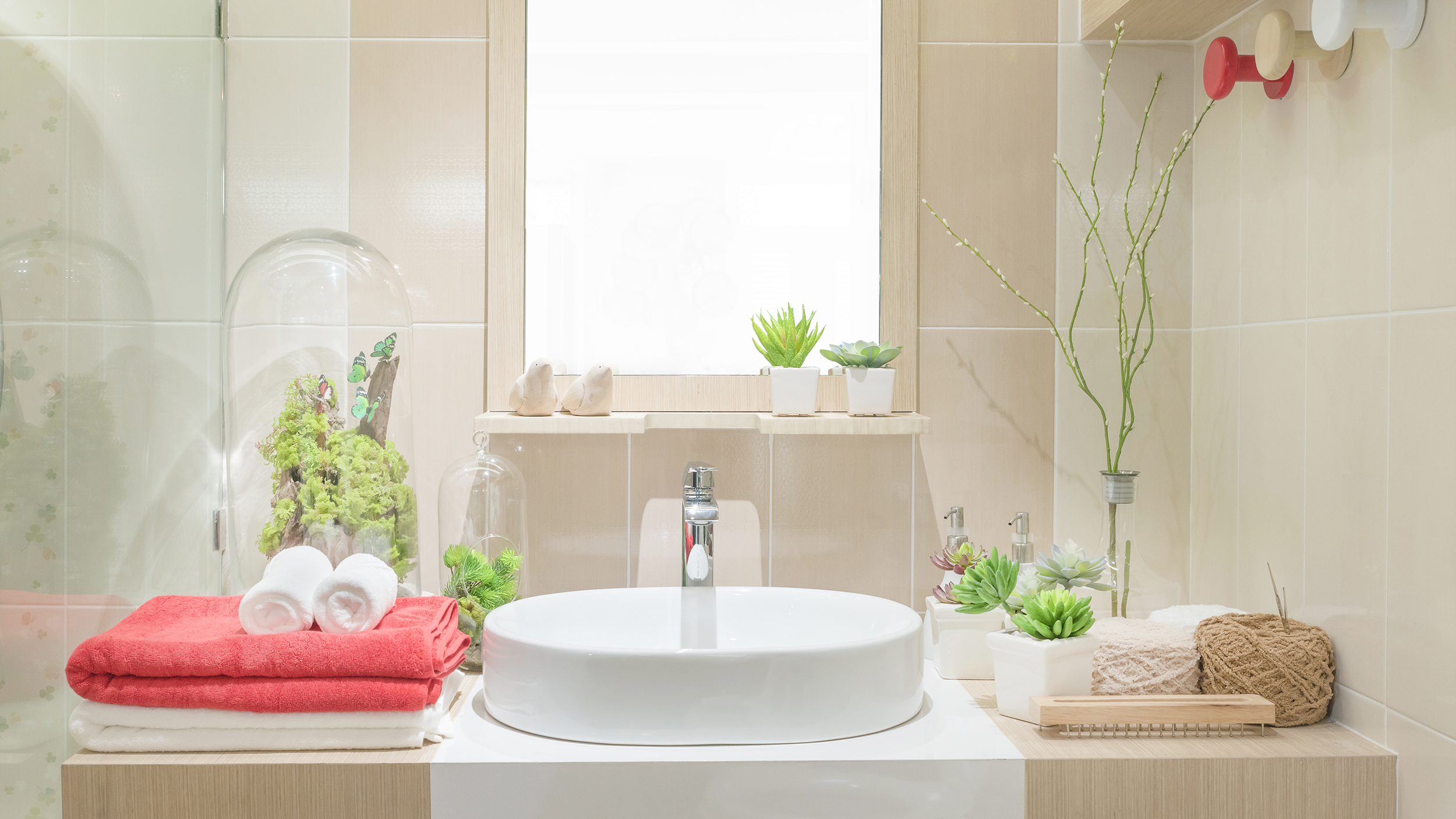 3 benefits of bathroom and shower plants - Bathroom Plants