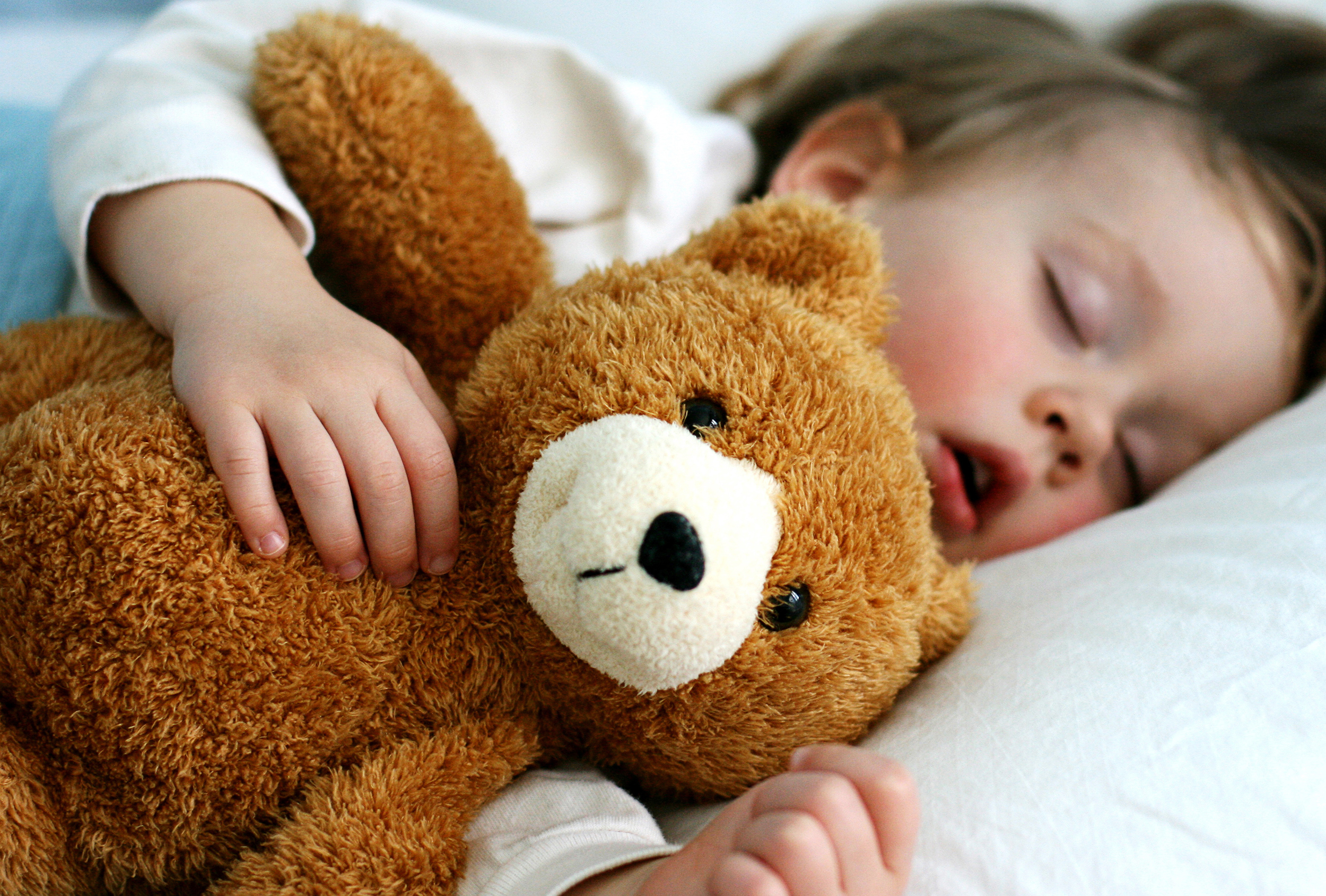 Sleeping With A Stuffed Animal As An Adult Is Ok Experts Say