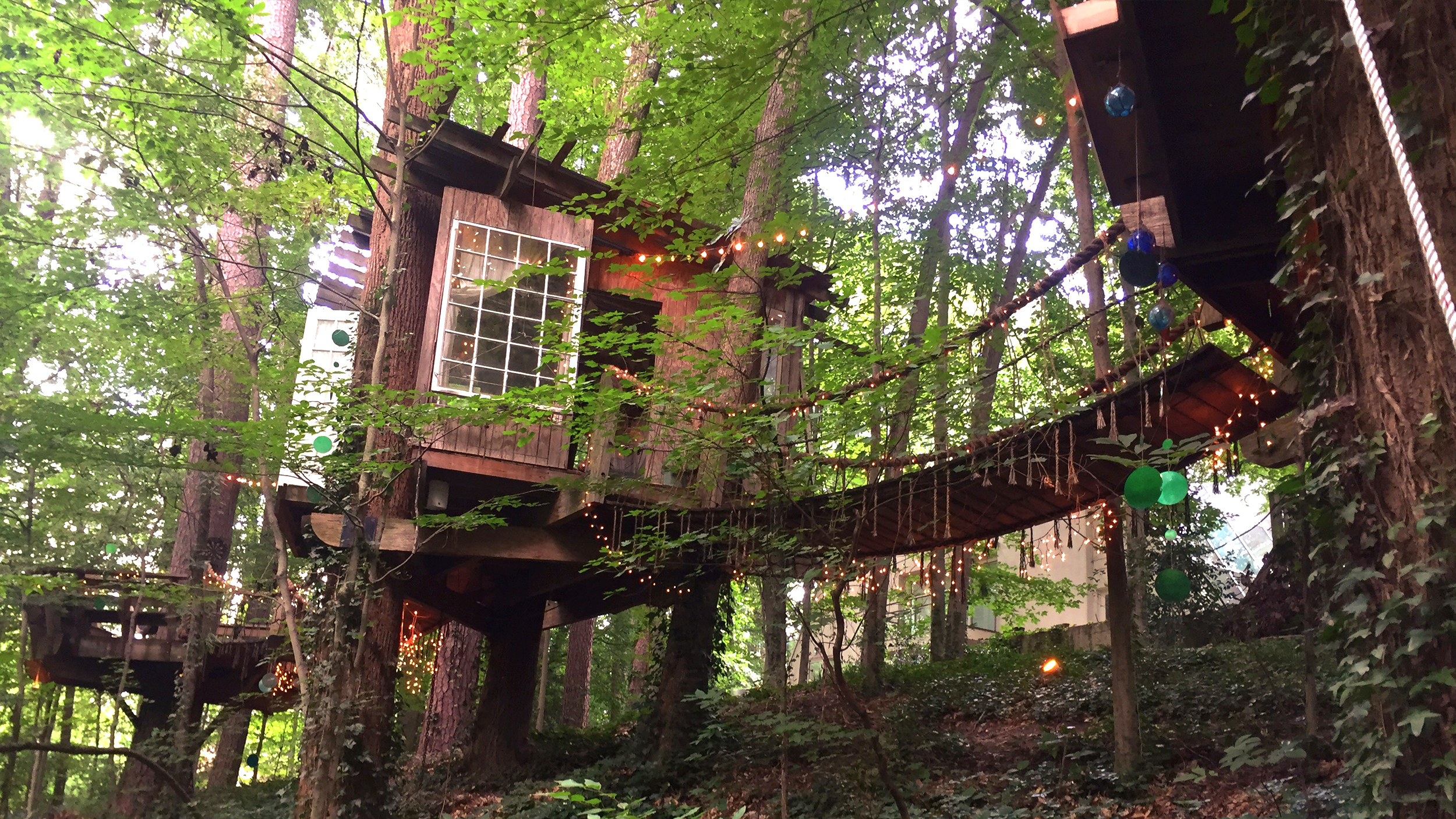 Treehouse Pictures This Airbnb Treehouse Is The Most Wished For Listing Todaycom
