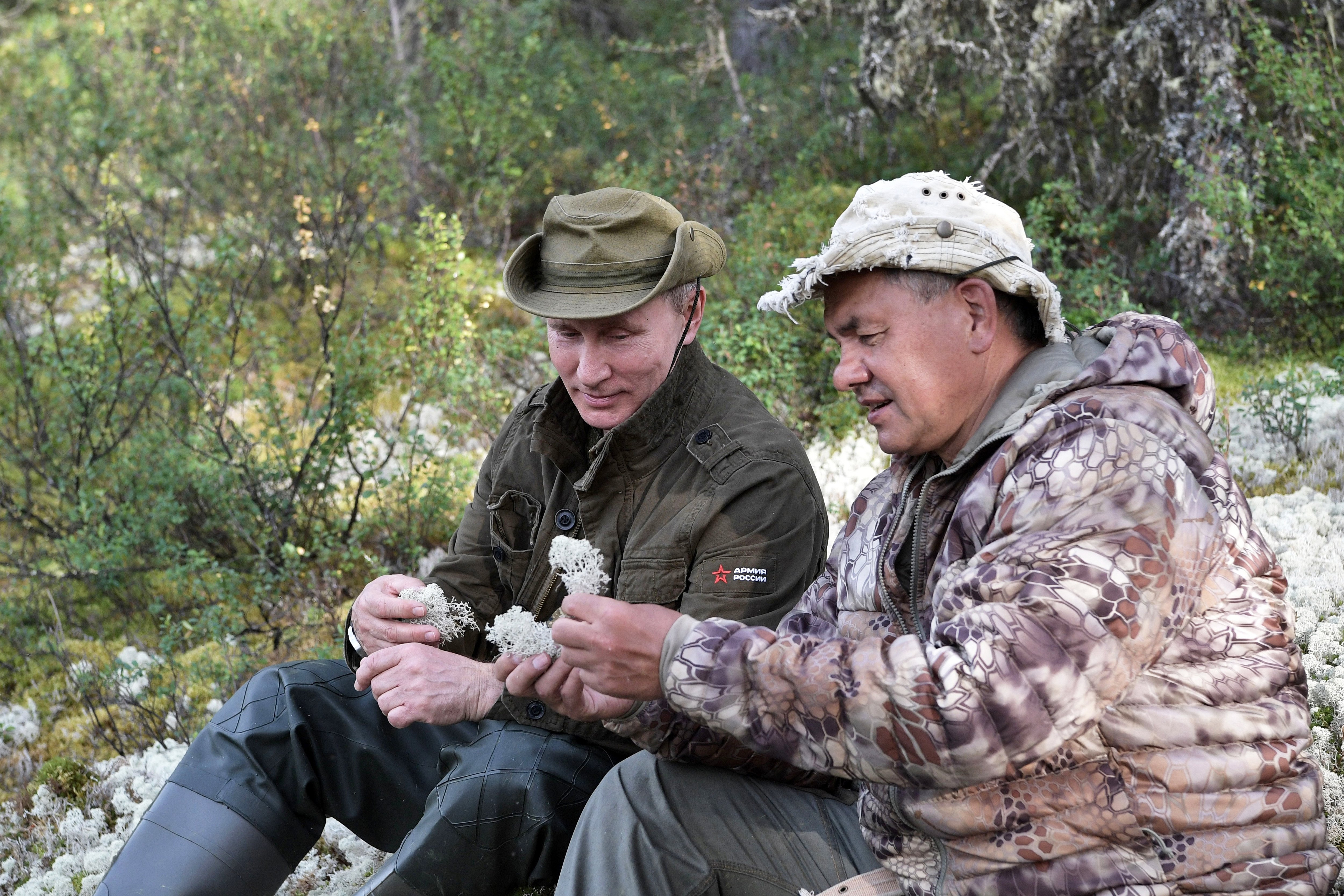 Image: Vladimir Putin and Sergei Shoigu