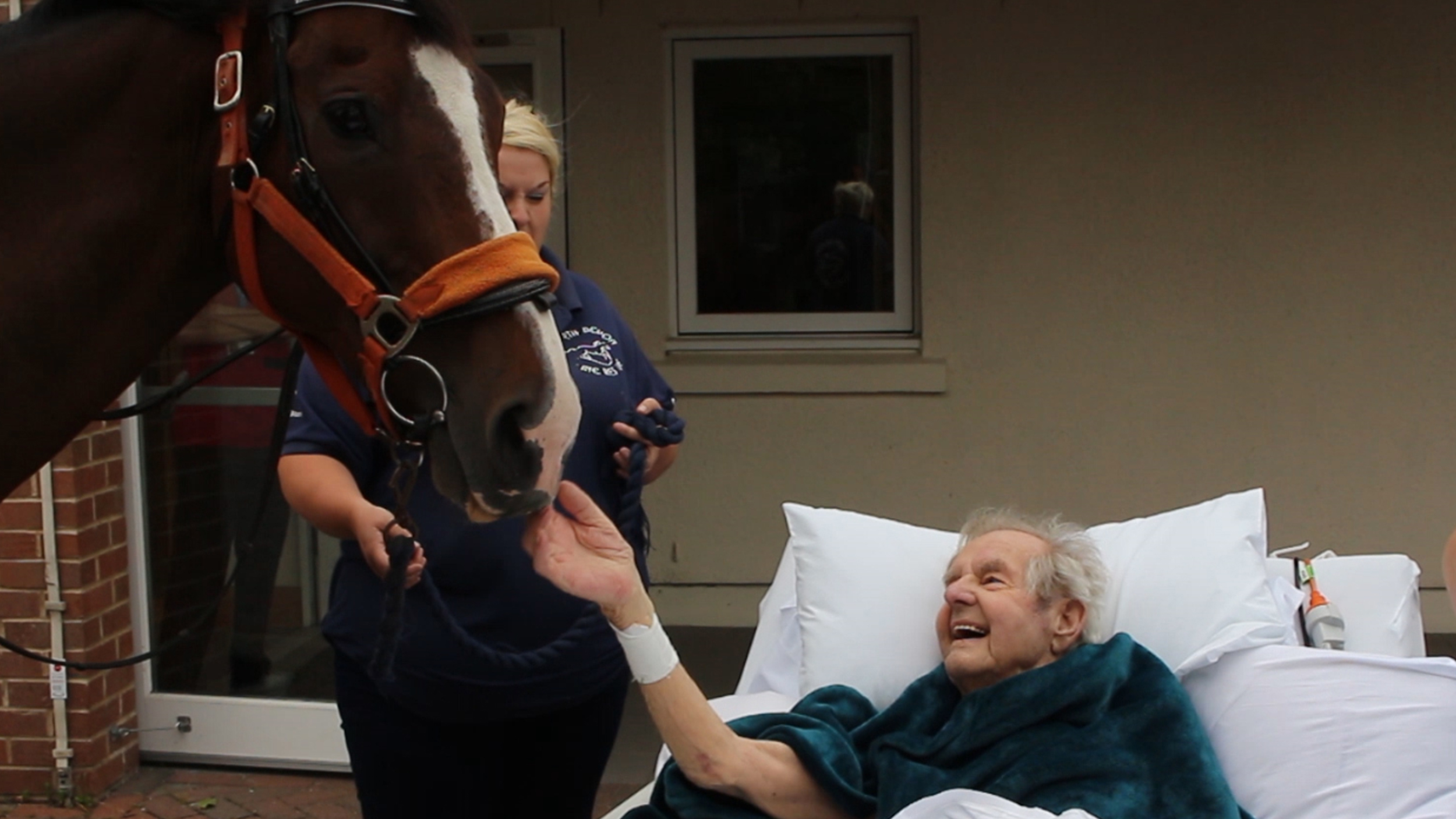 Family brings horse to dying man's bedside in sweet surprise