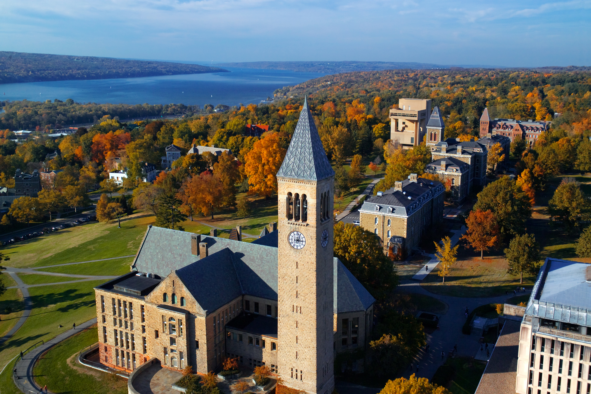 Image: Cornell University