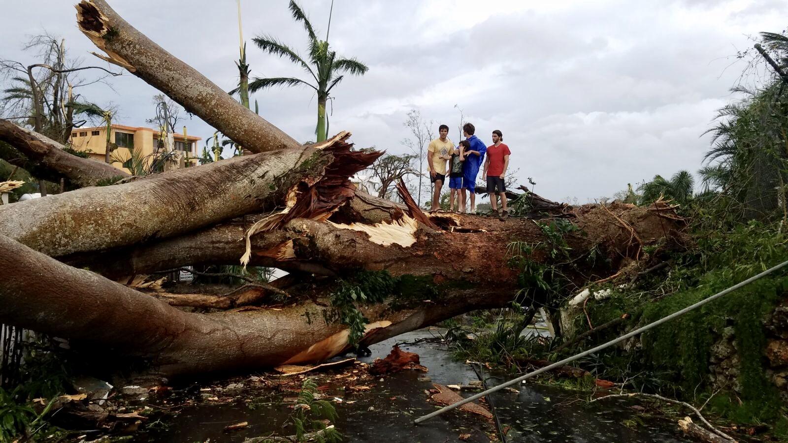 Puerto Ricans Face Devastated Landscape After Hurricane