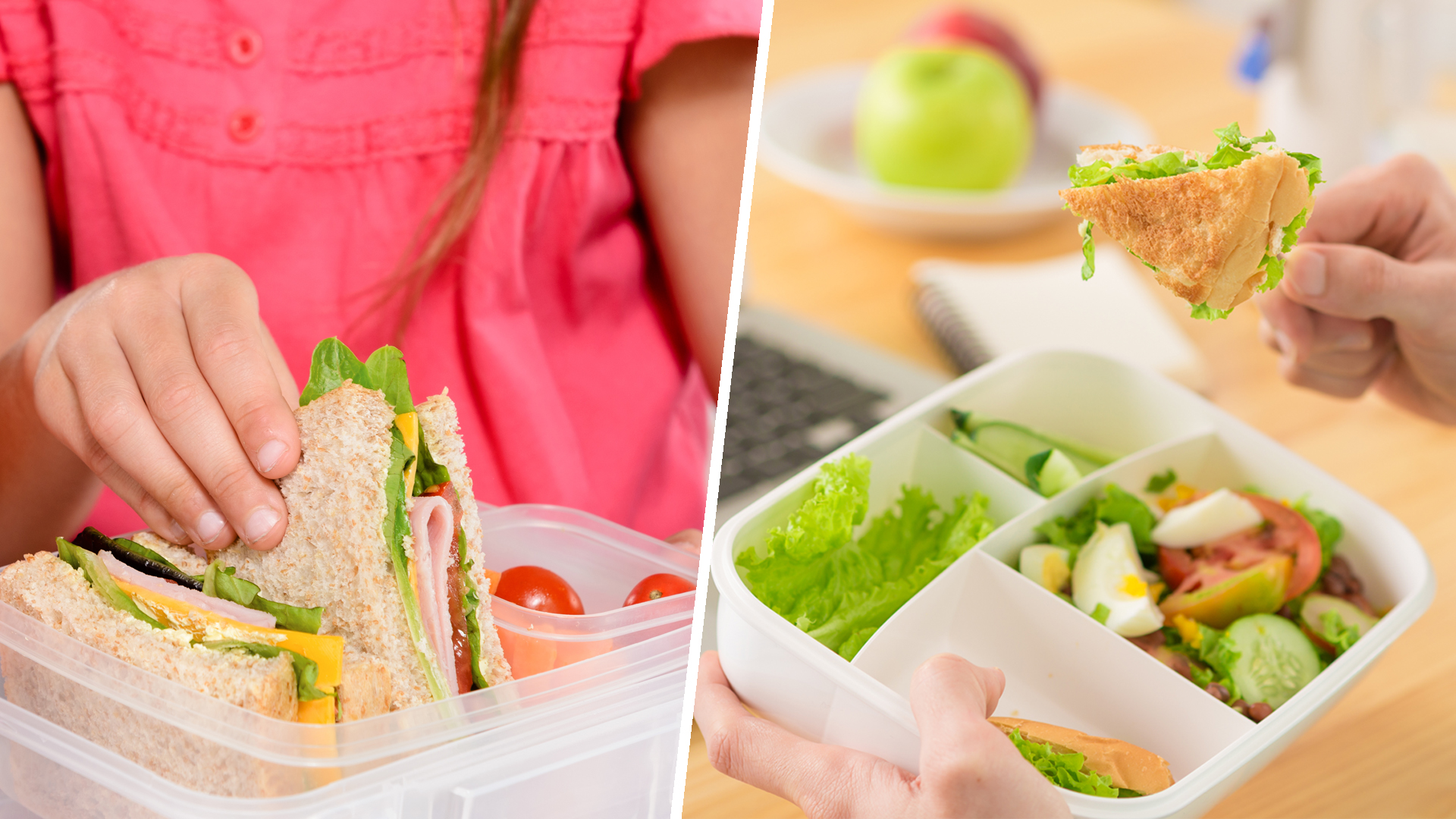 Waterproof Compact Or Bento Best Lunch Boxes For Work Or