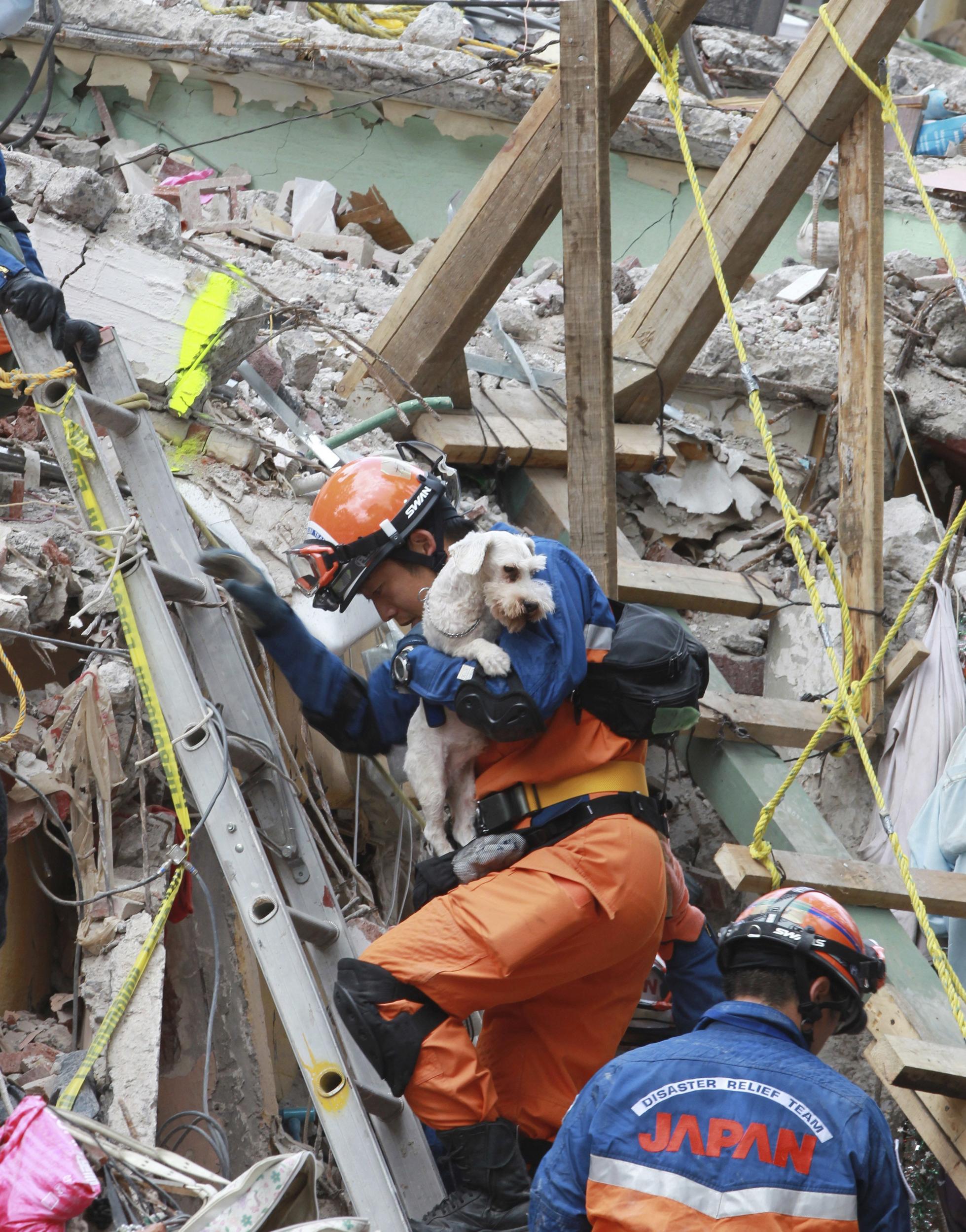 Image: Survivors rescue works continue despite aftershock in Mexico