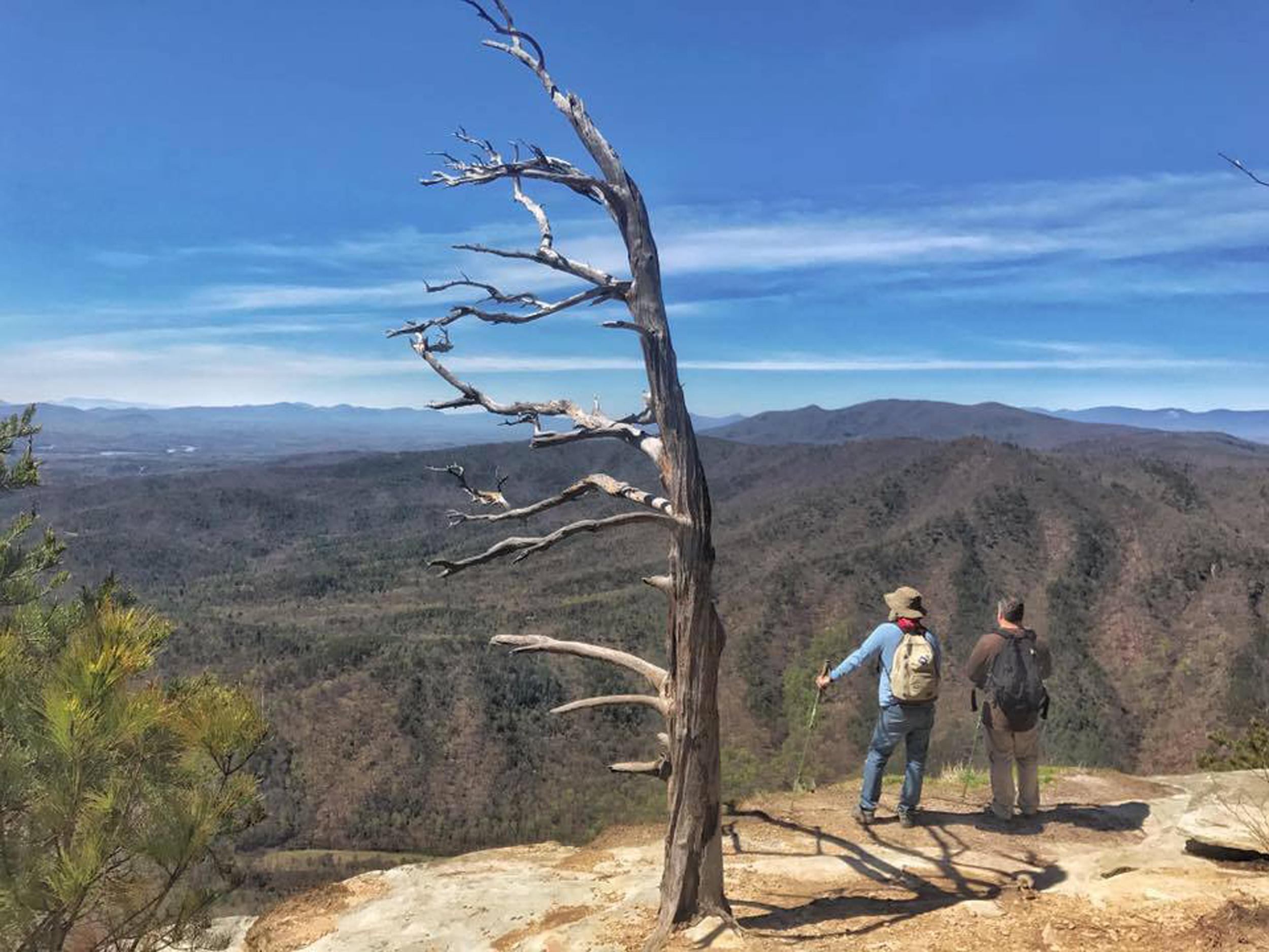 Image: Hiking Blog