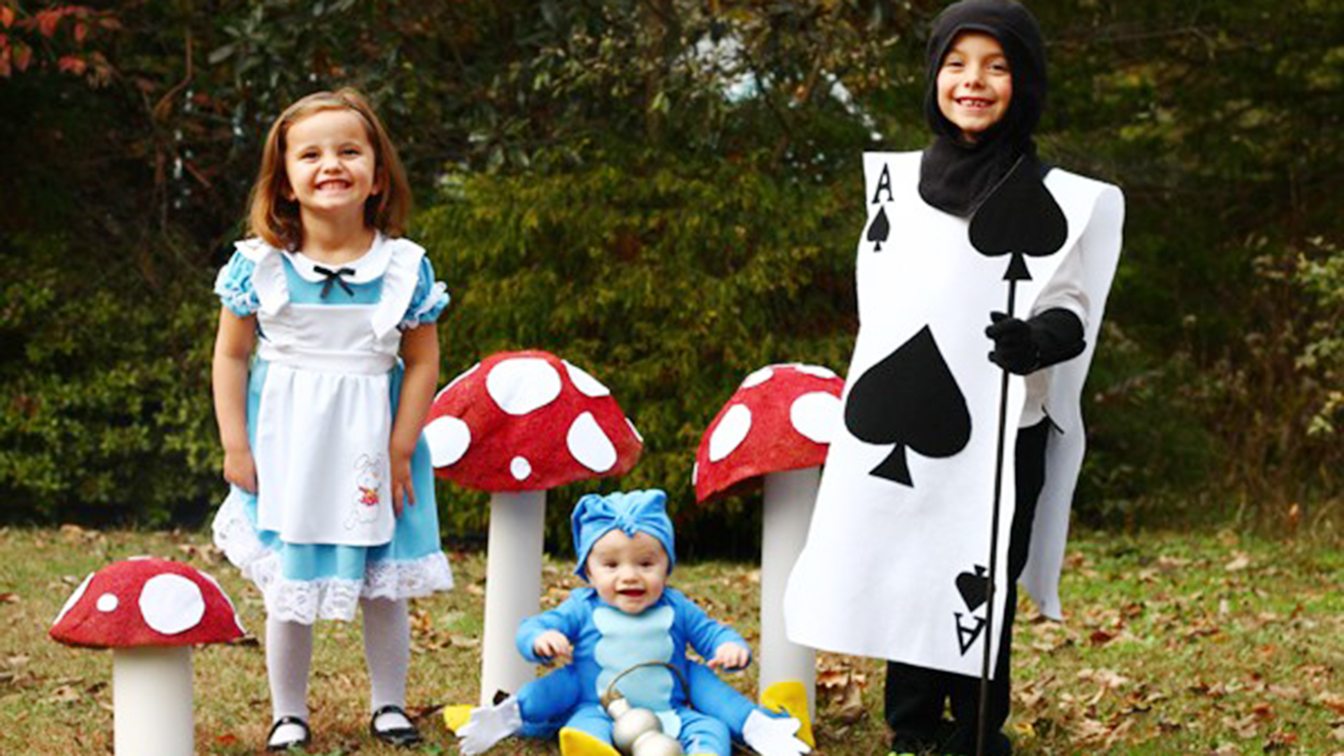 Easy Diy Family Halloween Costume Alice In Wonderland