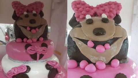 Minnie Mouse Cake Fail Going Viral On Reddit