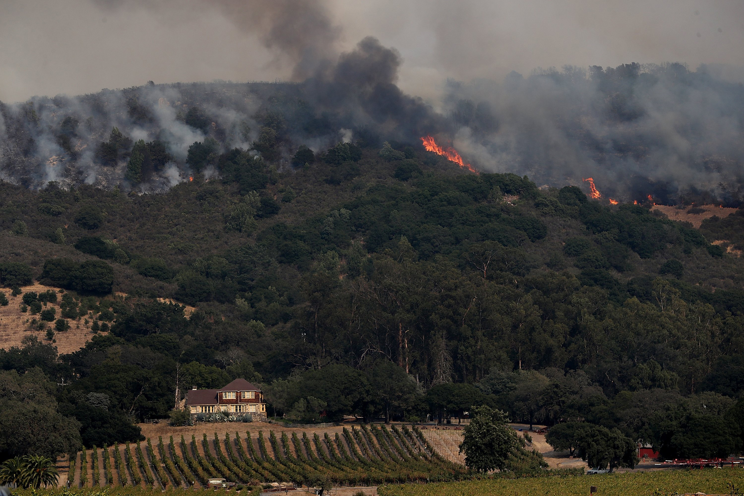 Image: A wildfire approaches Gundlach Bundschu winery