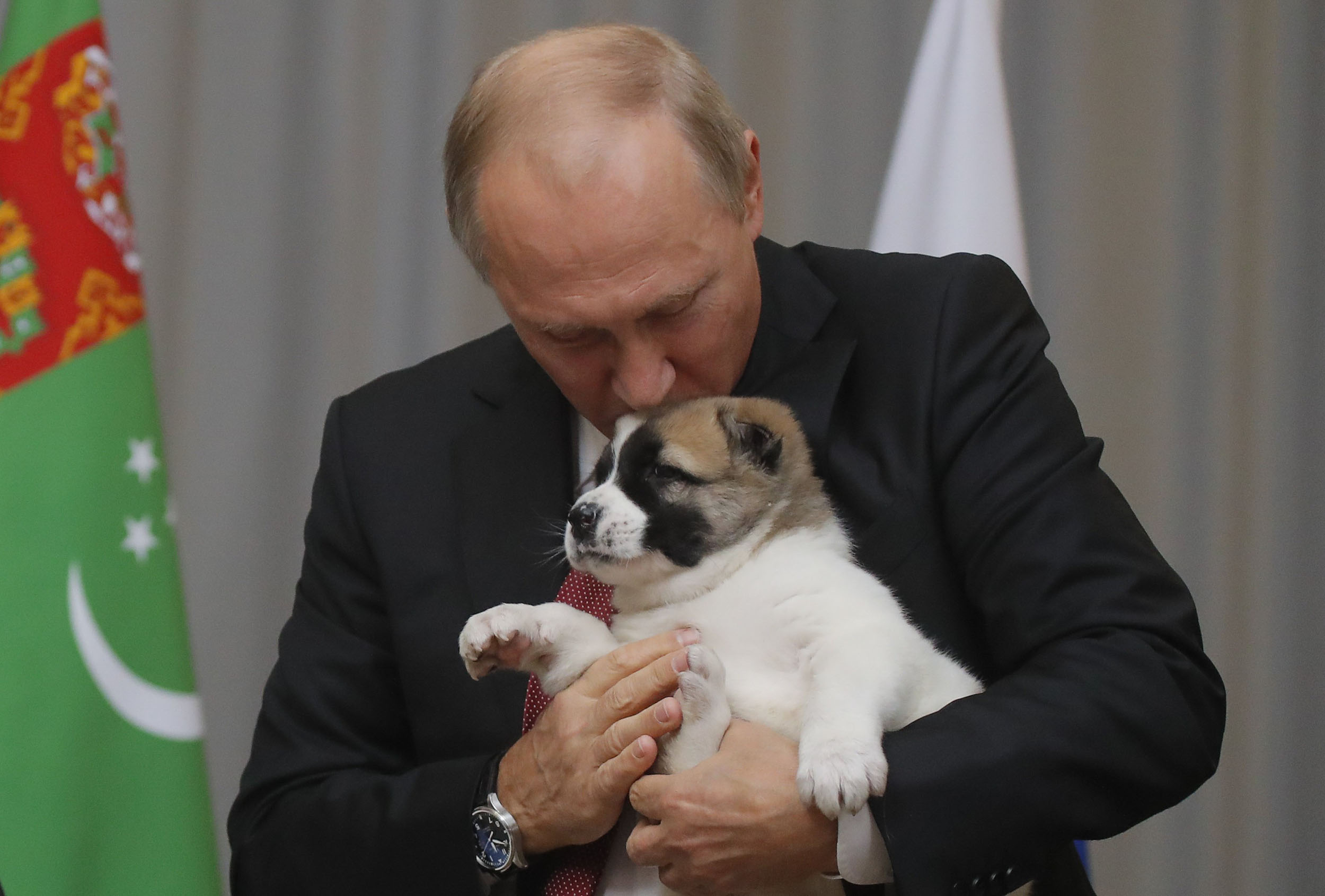 Doggy Diplomacy: Putin Gets Cute Puppy for His 65th Birthday