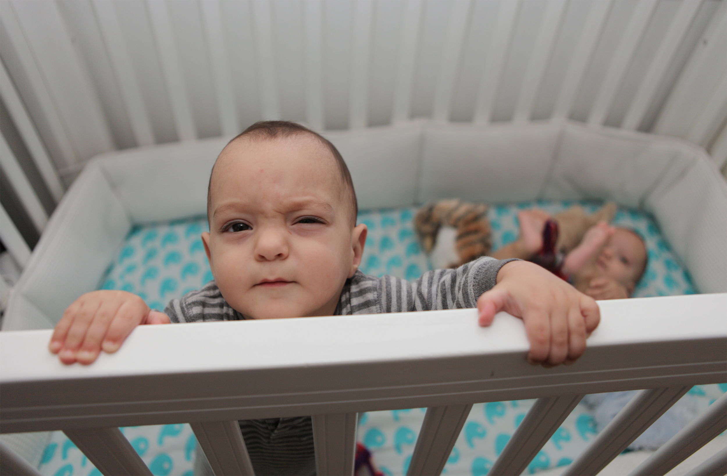 Image: Babies in crib