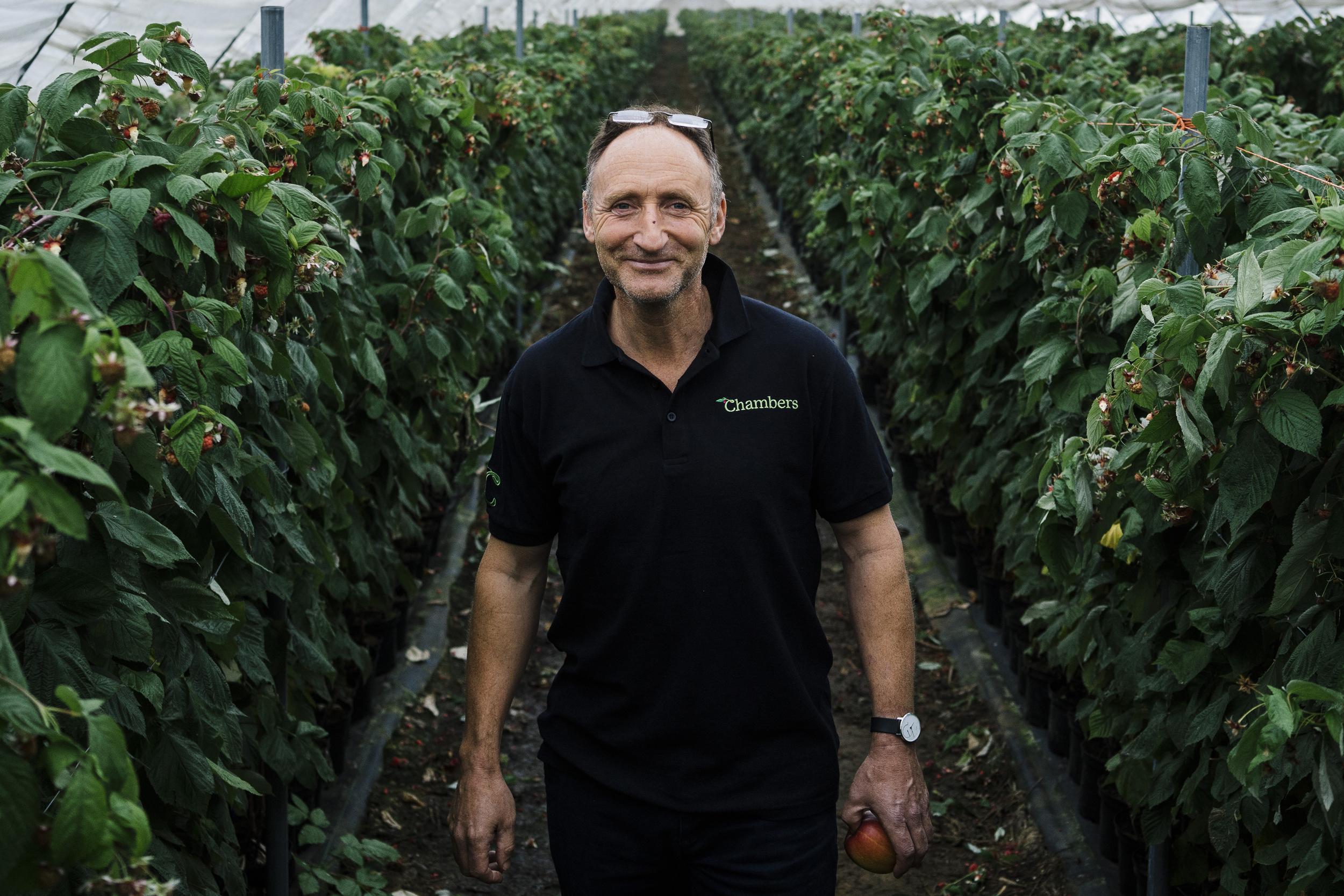 Image: British farmer Tim Chambers at Oakdene Farm