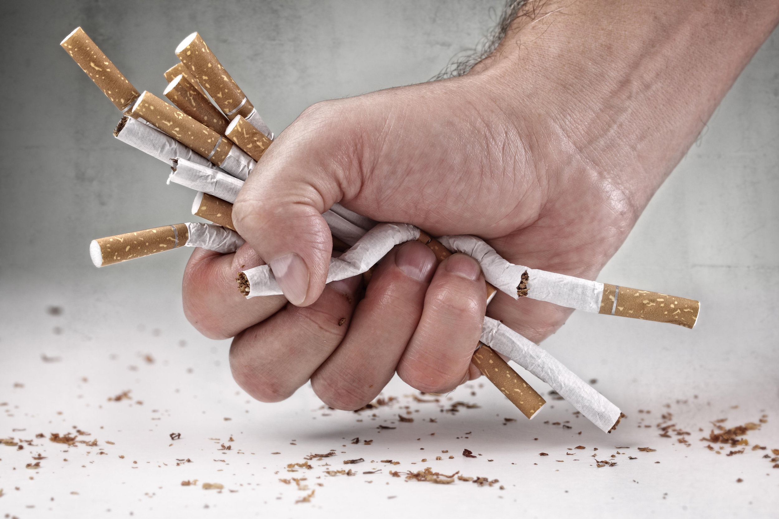 сын политика смотреть фото против курения щуку