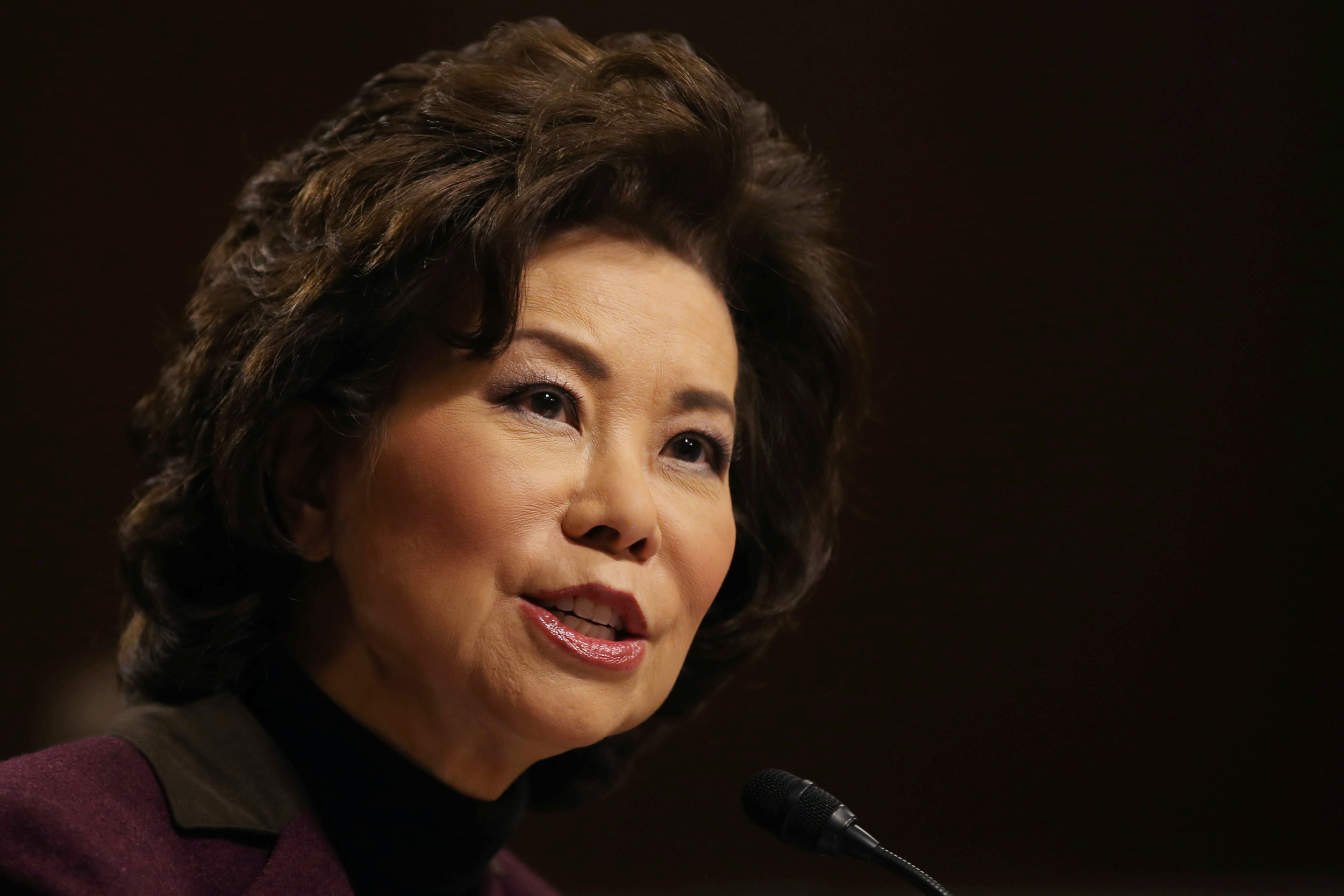 Image: Elaine Chao testifies before a Senate Commerce Science and Transportation Committee confirmation hearing