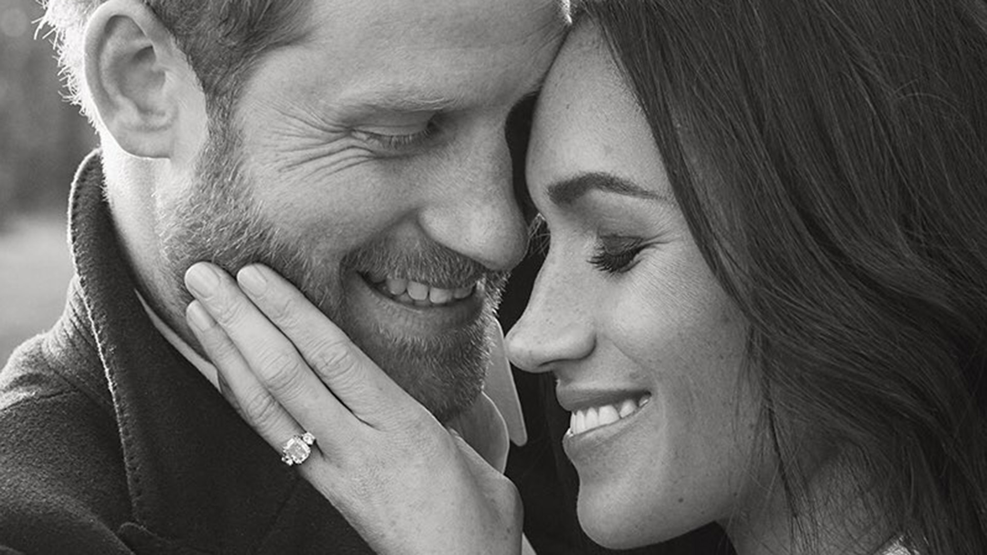 13++ Prince Harry Meghan Markle Portrait