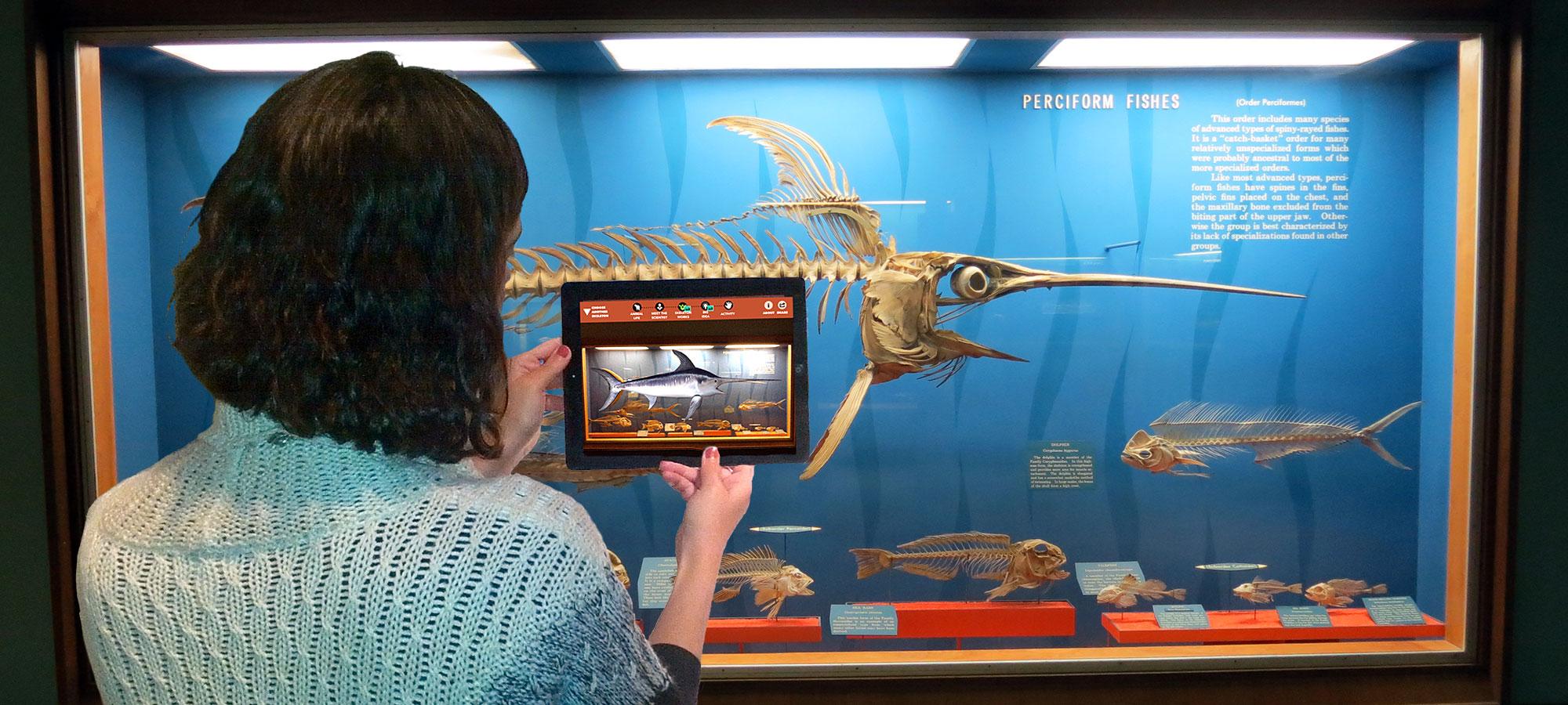 Image: Smithsonian