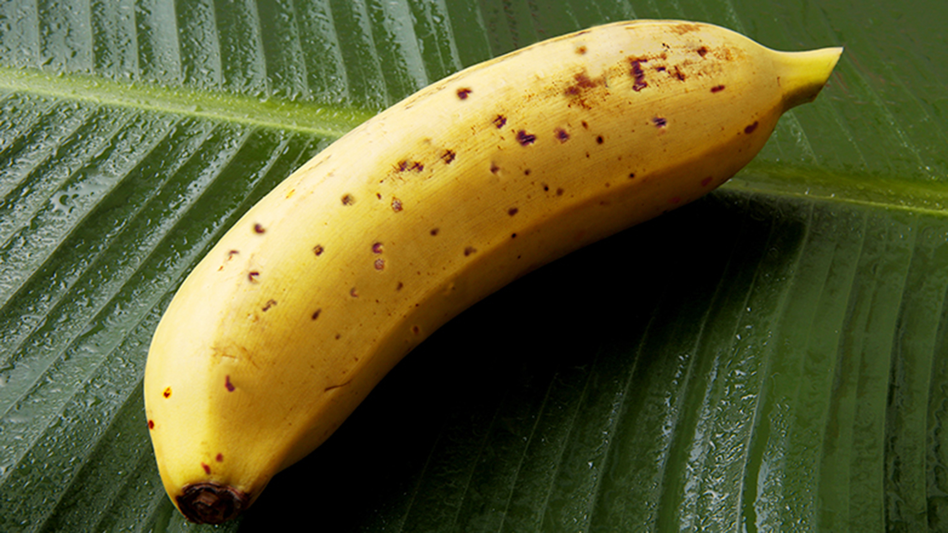 Scientists Invent Banana With Edible Peel