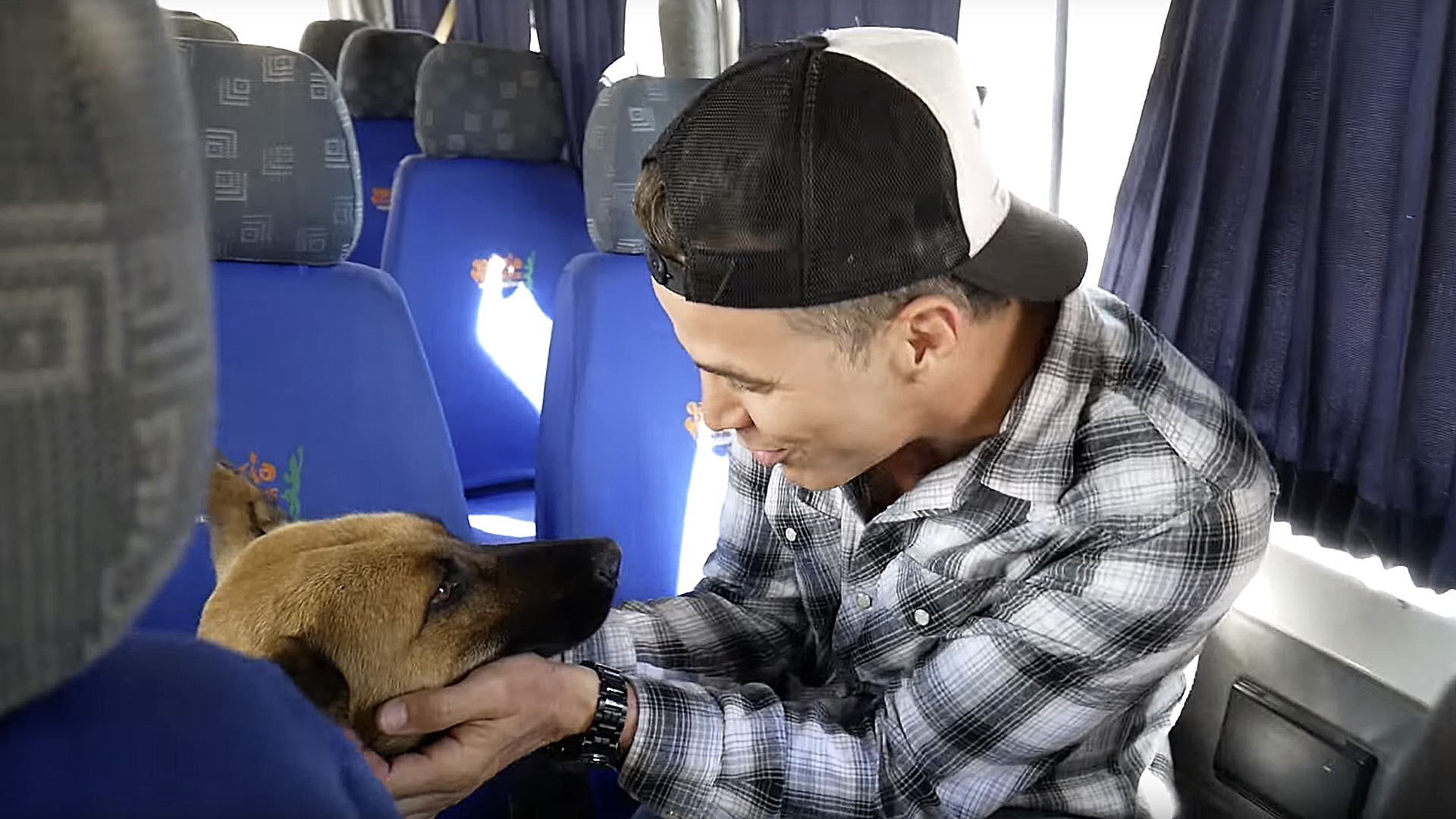 Steve O Rescues Stray Dog In Peru Finds True Love The official tik tok account for mtv's #ridiculousness! today show
