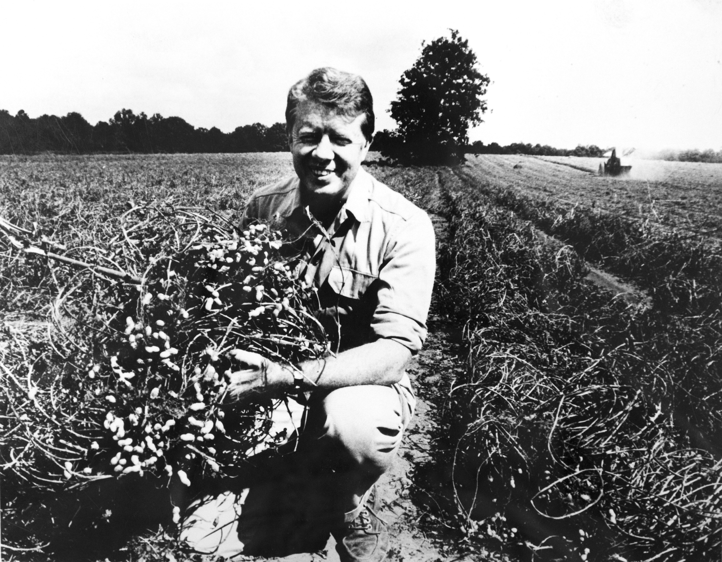 Is there a peanut farmer from Plains in the field of 2020 Democrats?