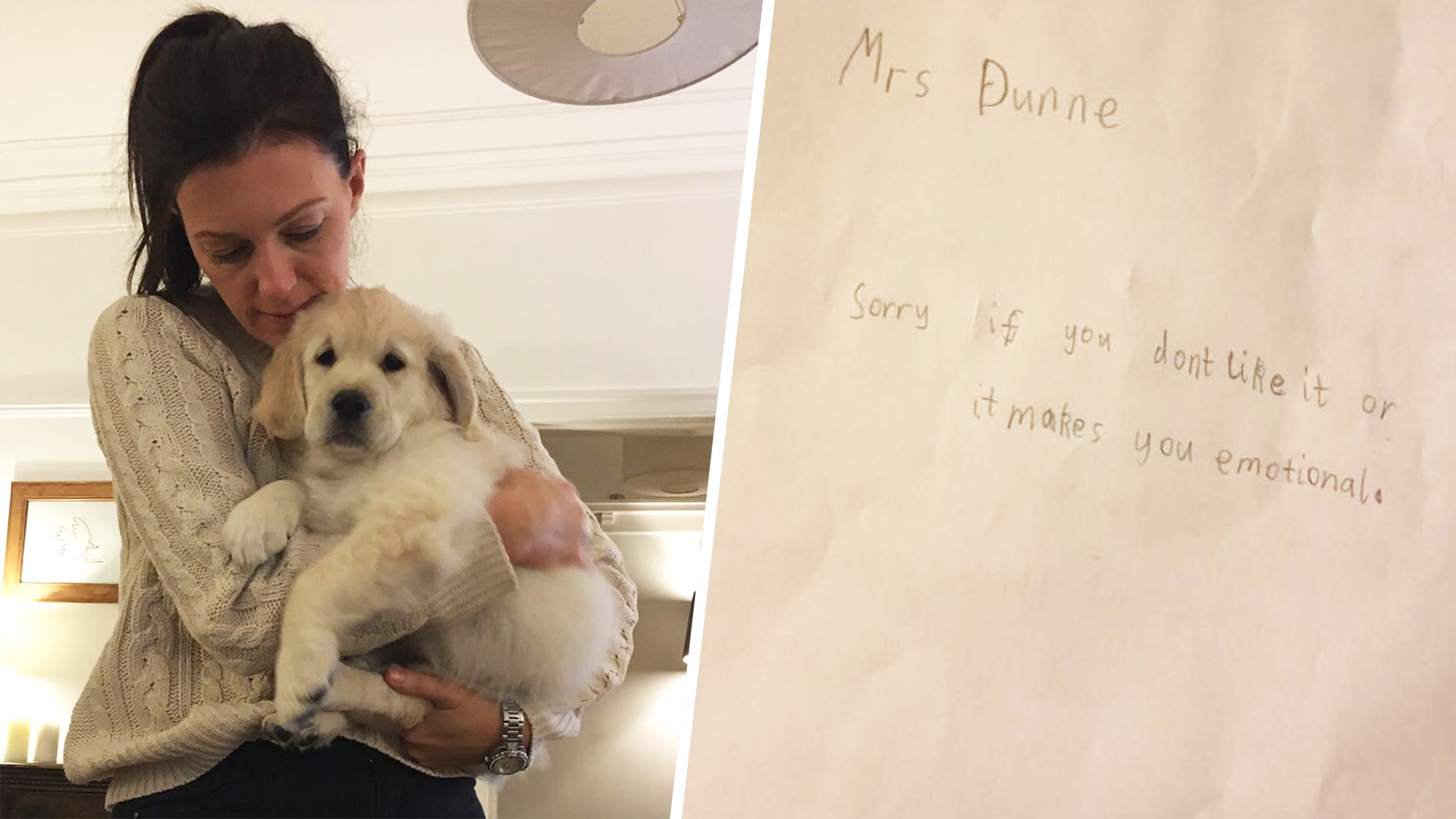 Scottish Student S Note To Teacher Mourning Loss Of Dog