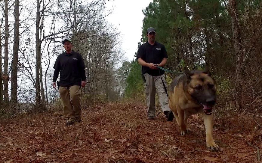 North Carolina man helps find missing people, pro bono