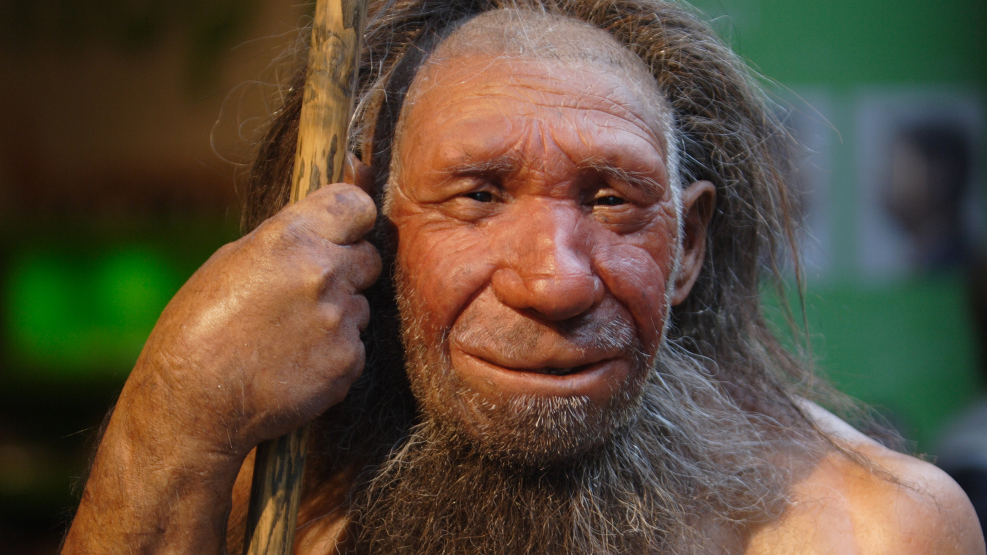 How much Neanderthal DNA do humans have? What does it mean?