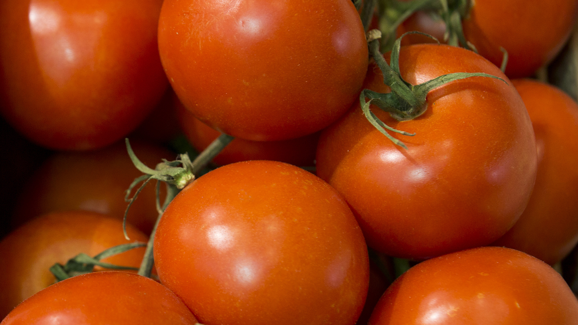 Tomato: is it a vegetable or fruit 94