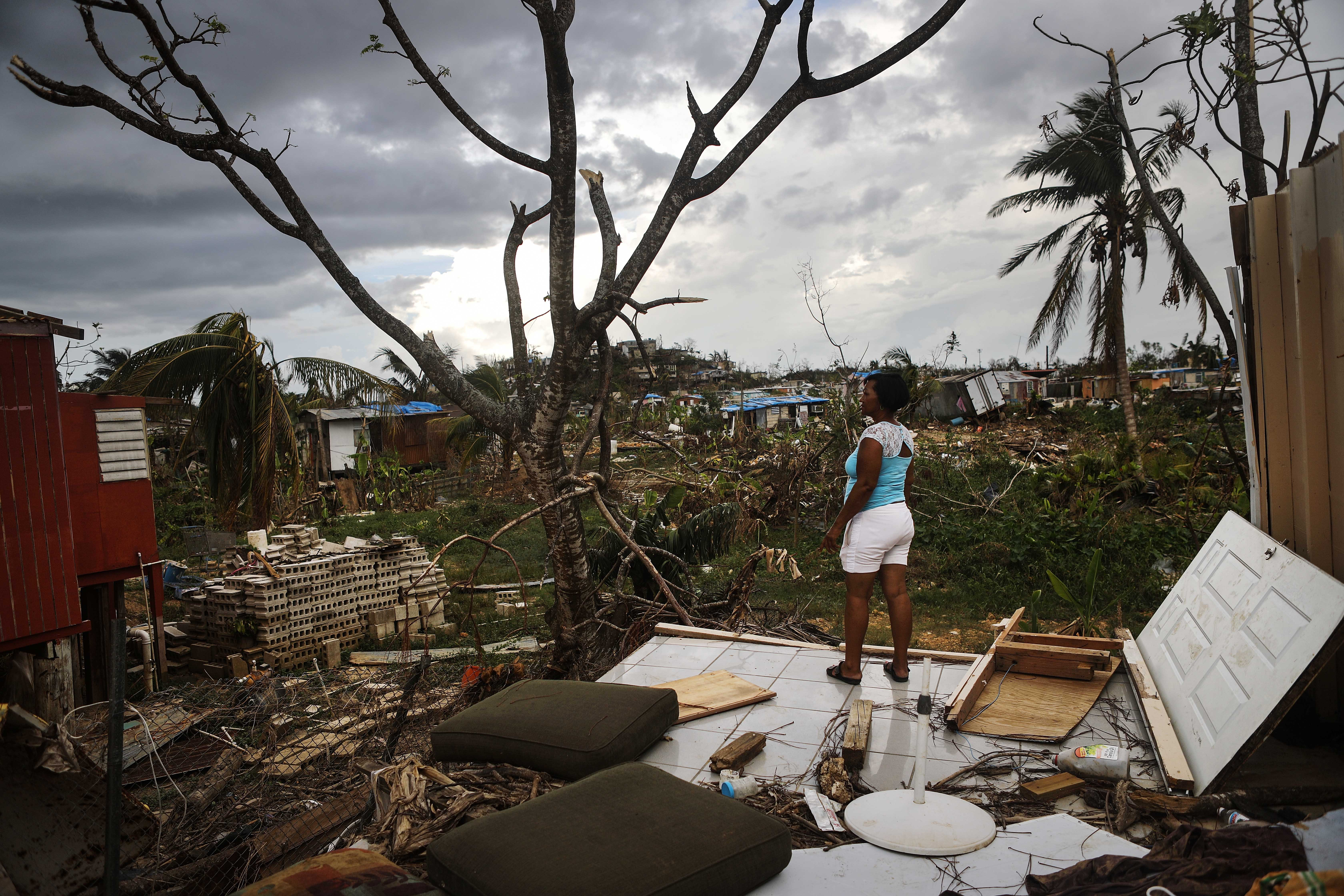 d1c0a0650c1 Why Is This Happening   Tracing the origins of the Puerto Rico disaster  with Naomi Klein  podcast   transcript