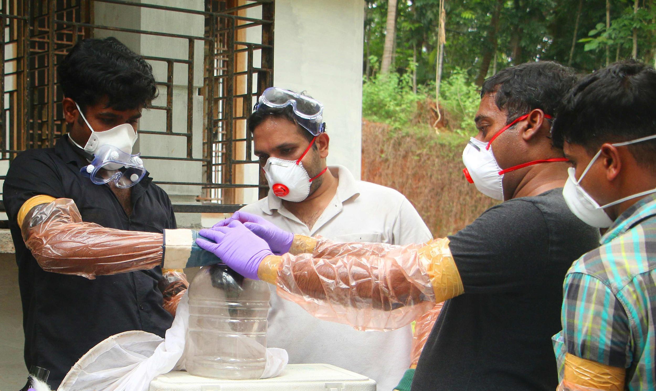 Nipah: el siguiente virus que tiene preocupada a Asia.